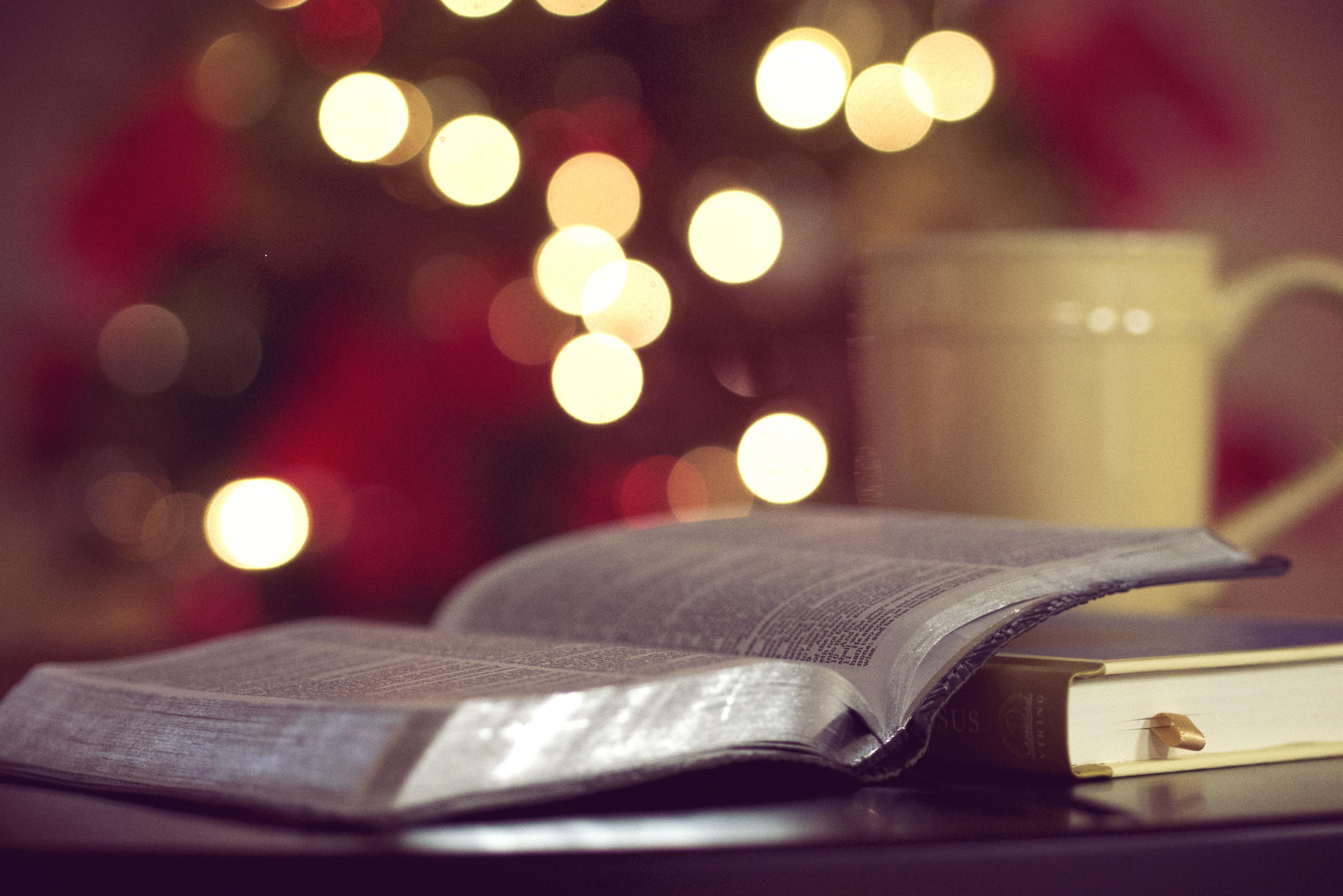 Fotos gratis : libro, novela, ligero, rojo, color, religión, Iglesia ...