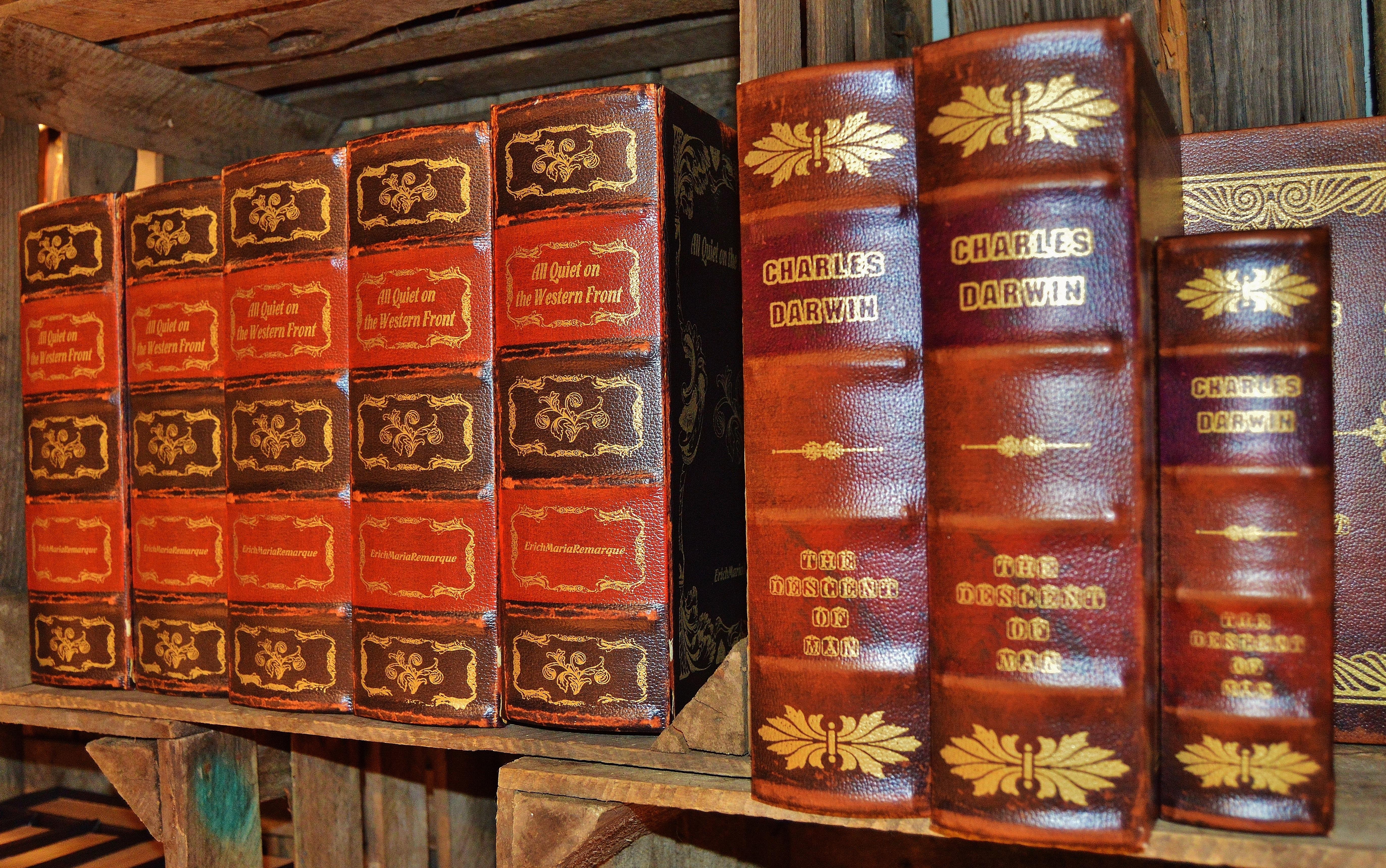Libro antiguo marr n caja espina libros anticuario cubiertas de cuero librer a