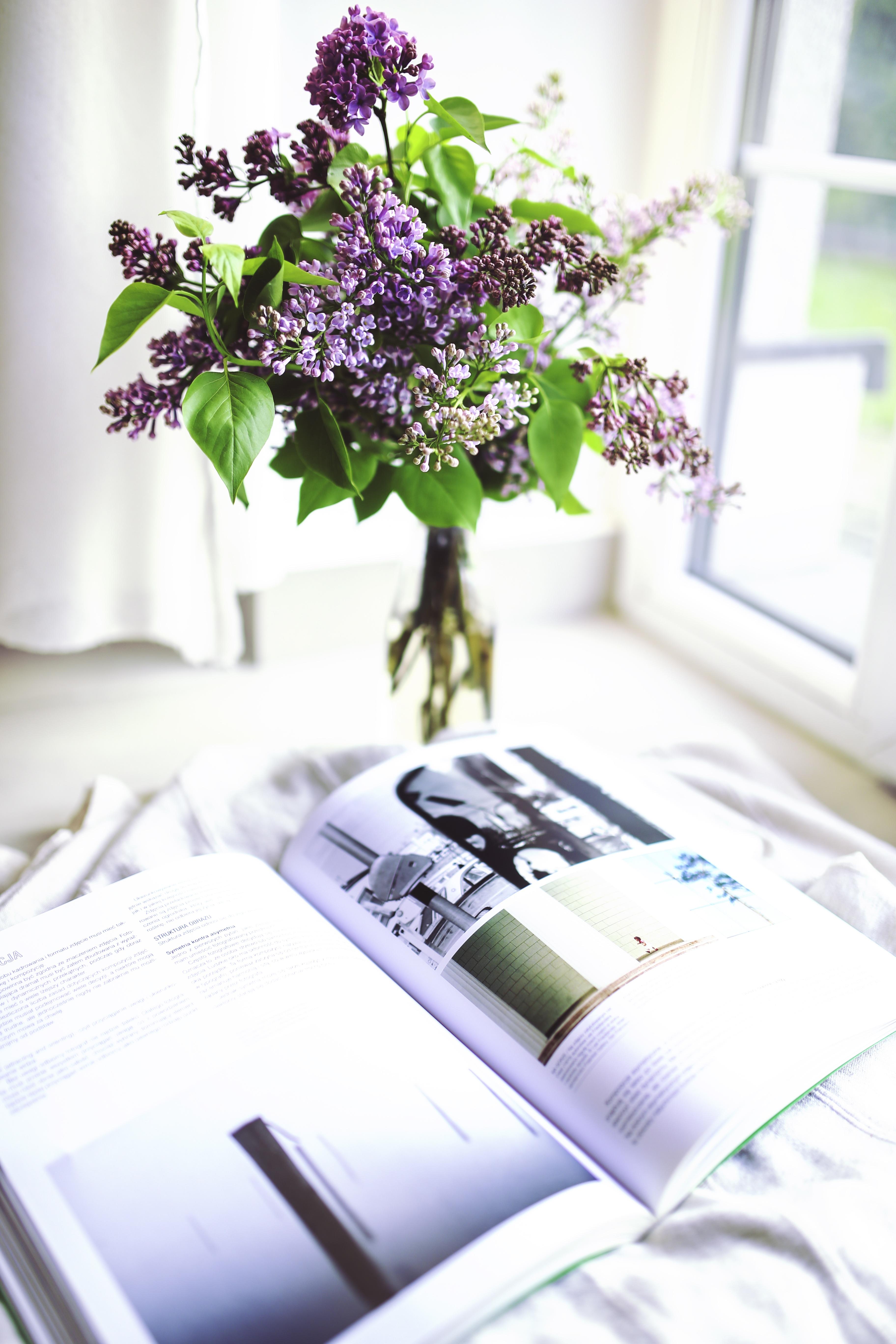 Kostenlose Foto Buch Pflanze Blume Lila Zeitung