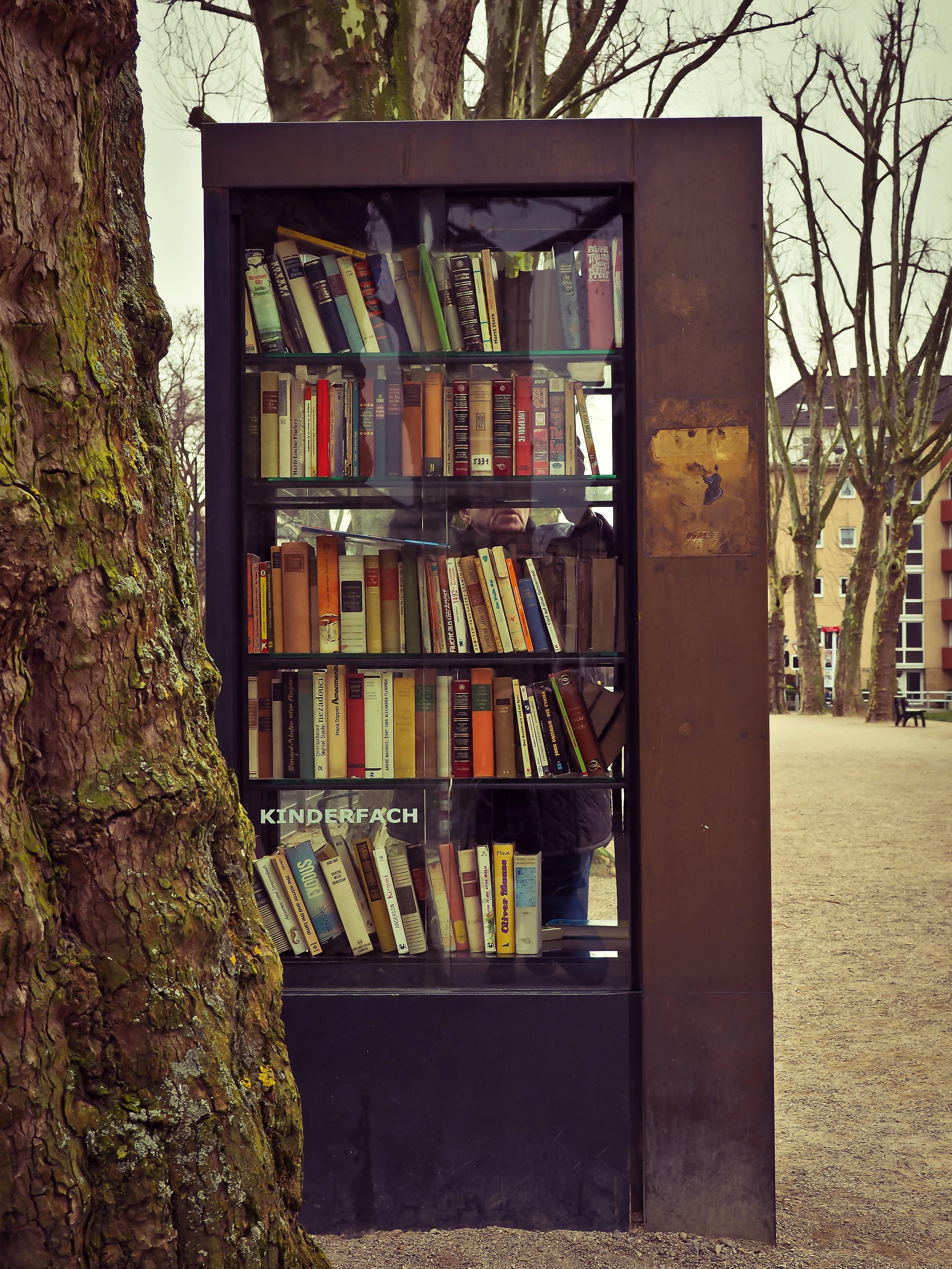 Book Read Architecture Wood House Window Home Wall Color Furniture Interior Design Shelf Bookcase Literature