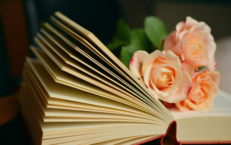 Immagini Belle Leggere Fiore Petalo Romantico Carta