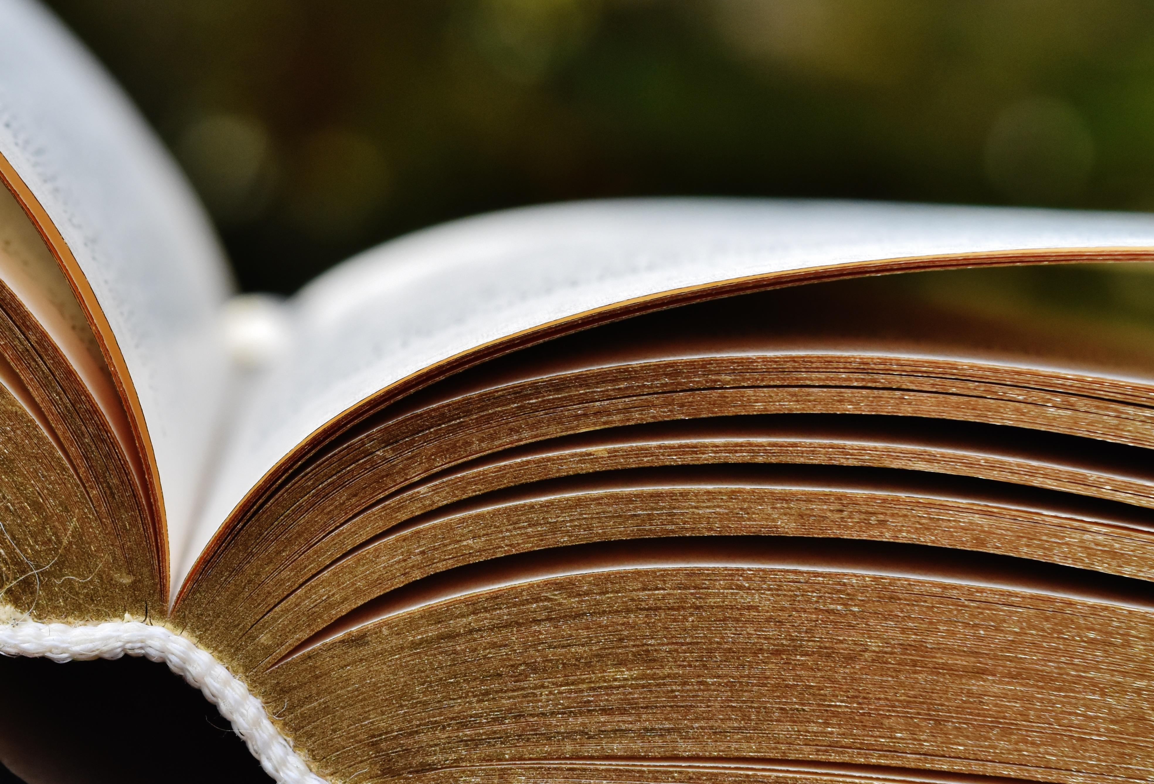 ebook Сверхплотная ядерная материя