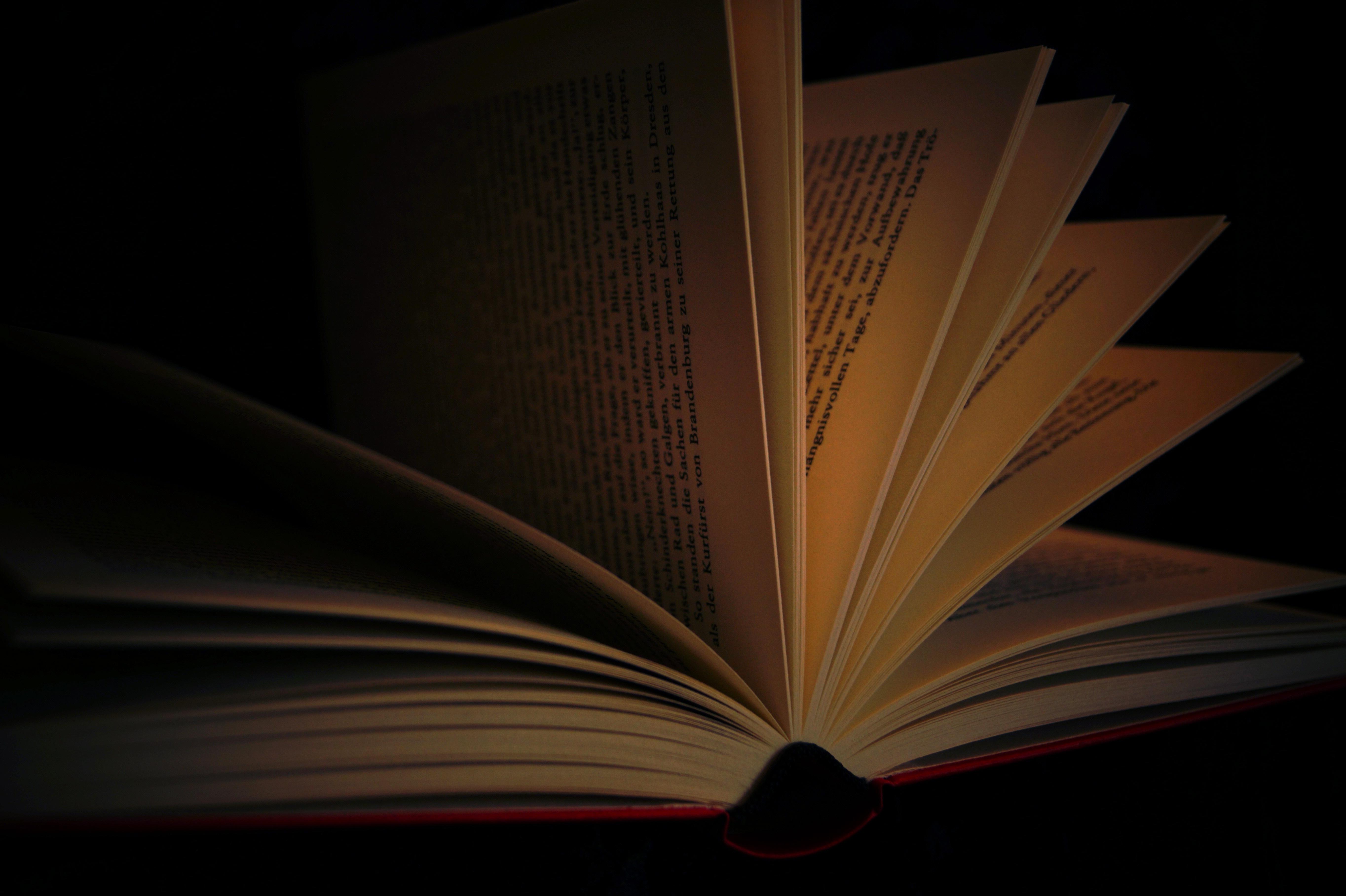 book Einführung in die philosophische Hermeneutik (2. überarbeitete