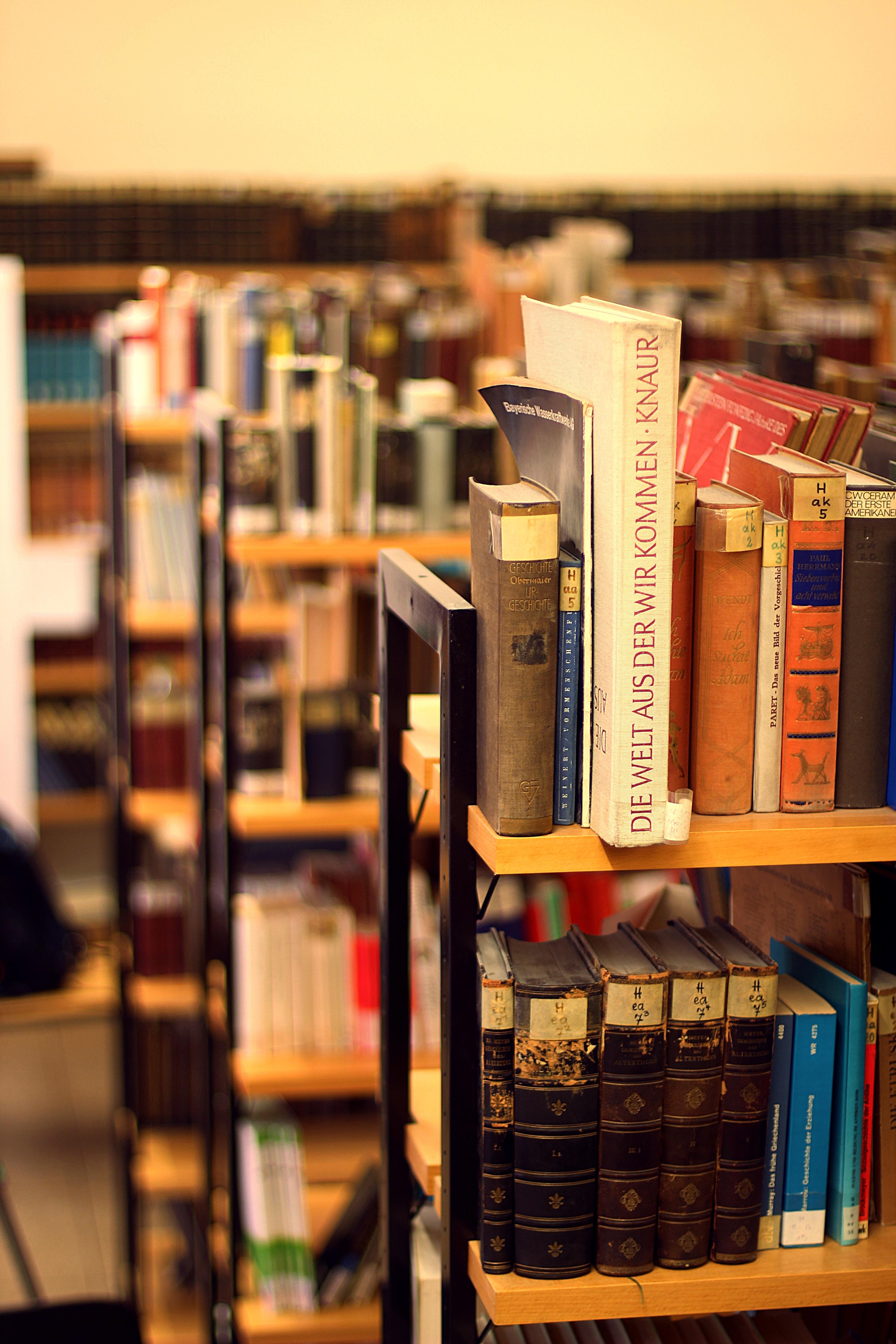 Fotos gratis leer madera cuero estante apilar habitaci n papel educaci n libro de texto fuente librer a literatura estudiar biblioteca