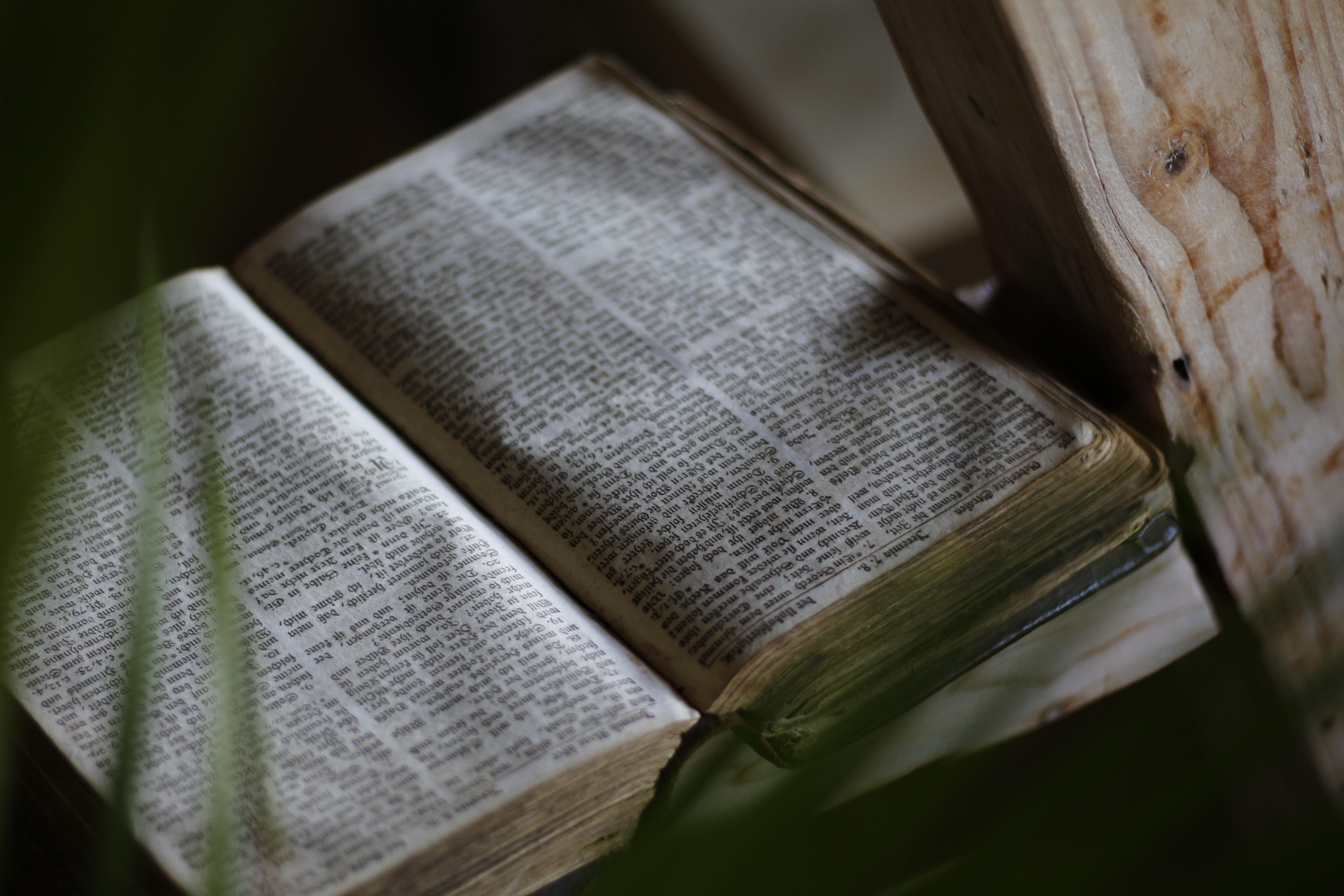 картинка древней библии шутим, нас