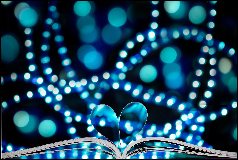 Fotos gratis : libro, agudo, ligero, Bokeh, difuminar, blanco ...