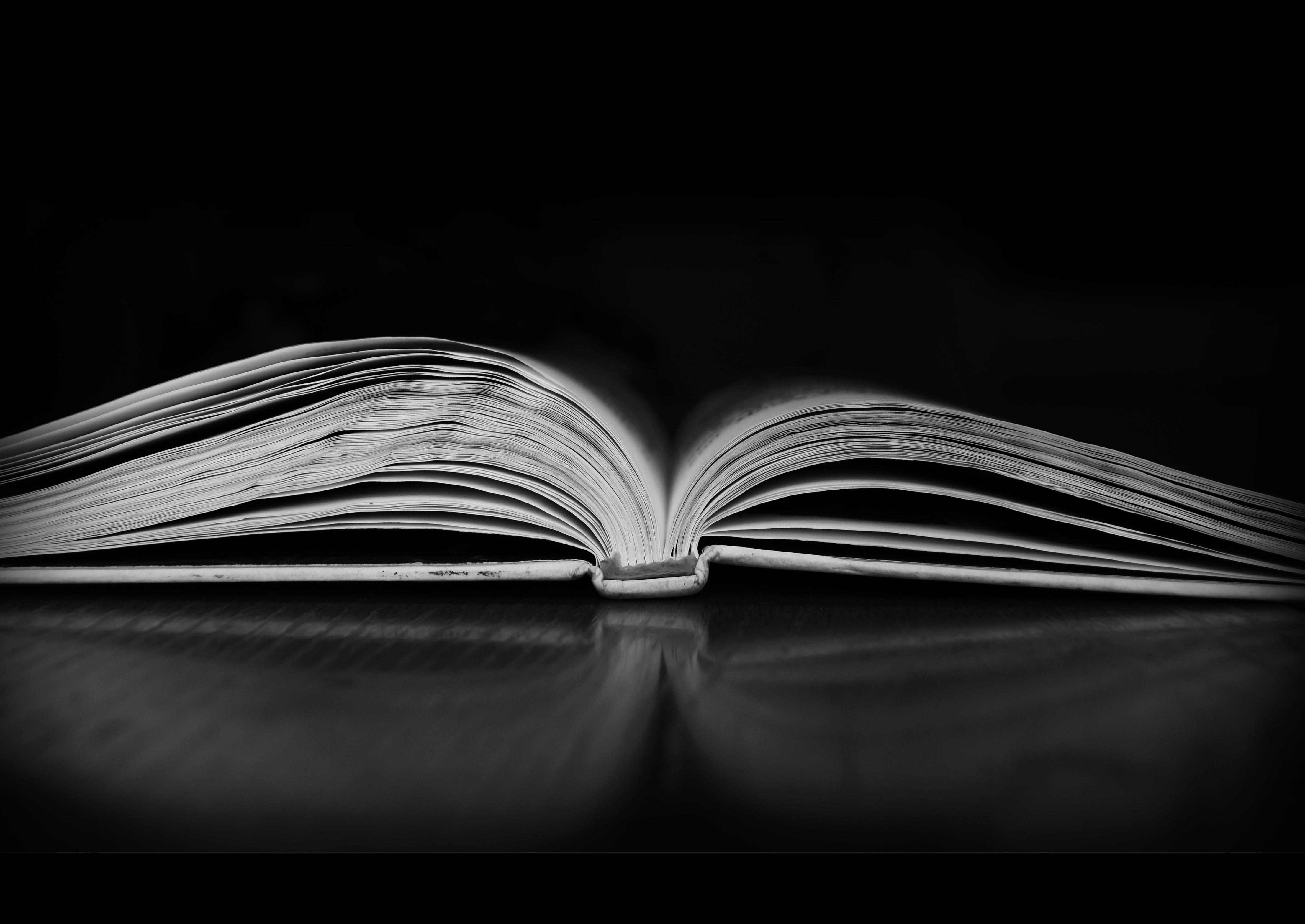 Images Gratuites Livre Aile Noir Et Blanc La