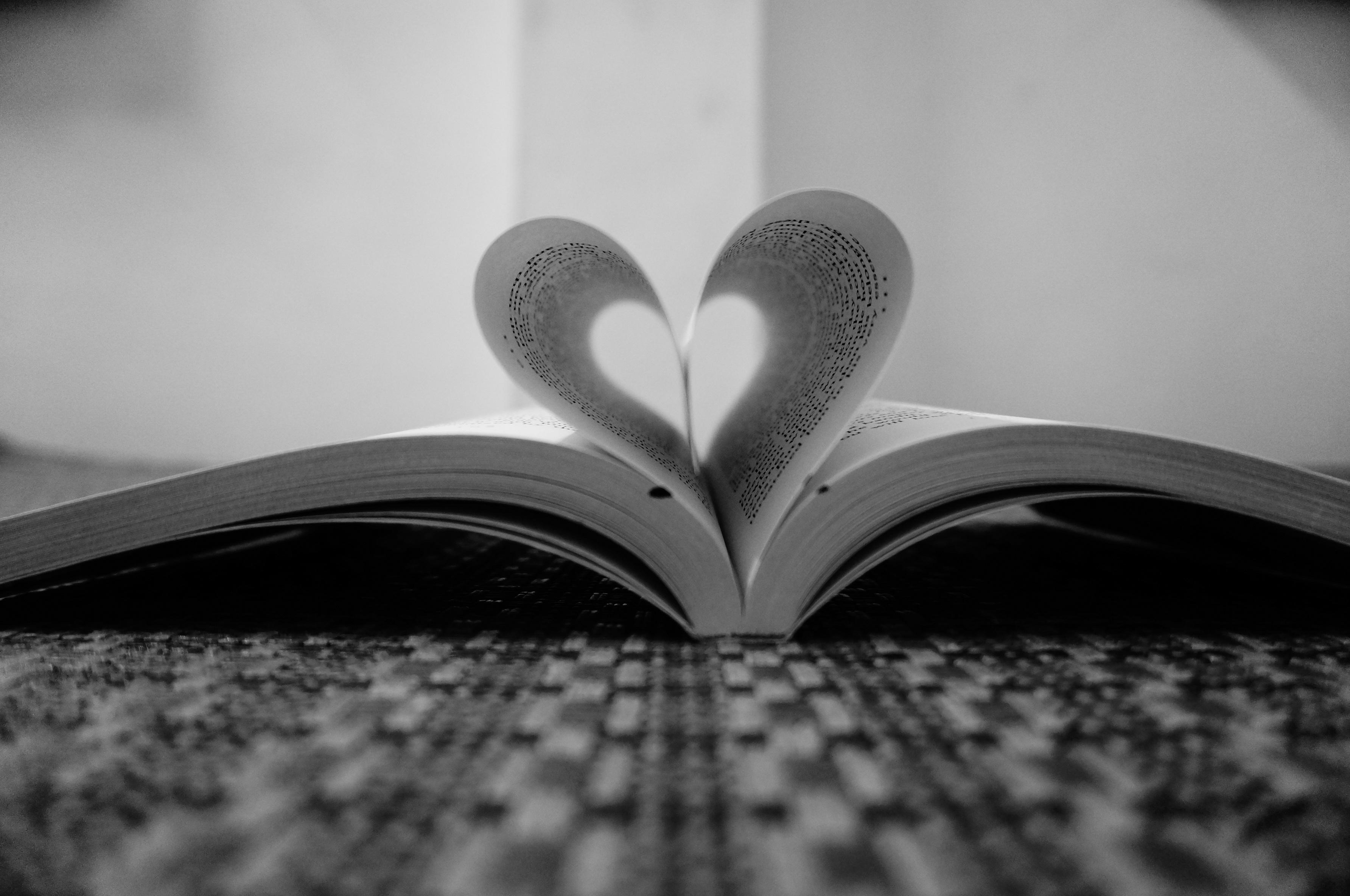 Fotos gratis : libro, ala, ligero, en blanco y negro, fotografía ...