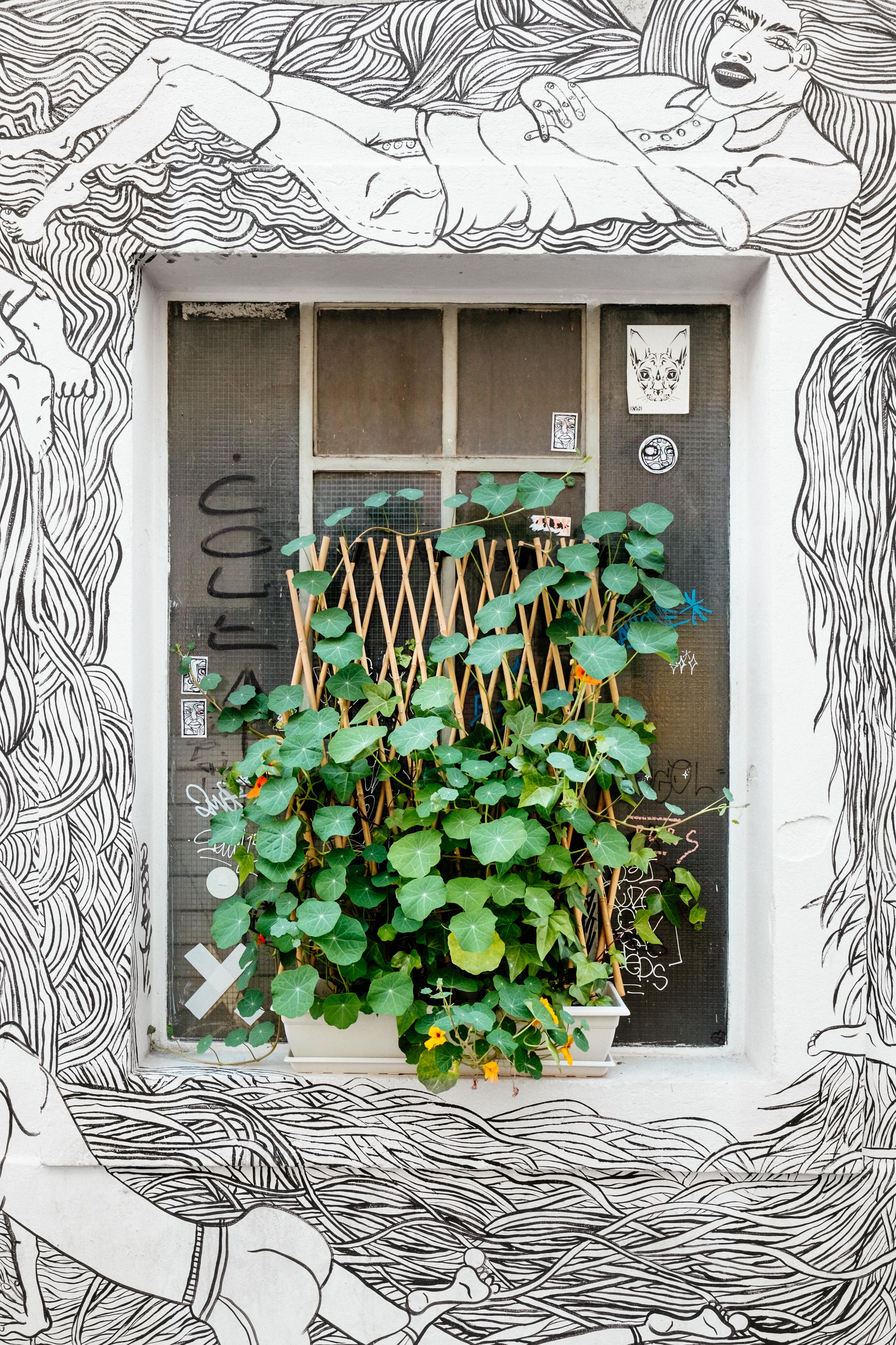Gambar Cabang Abstrak Hitam Dan Putih Arsitektur Jendela