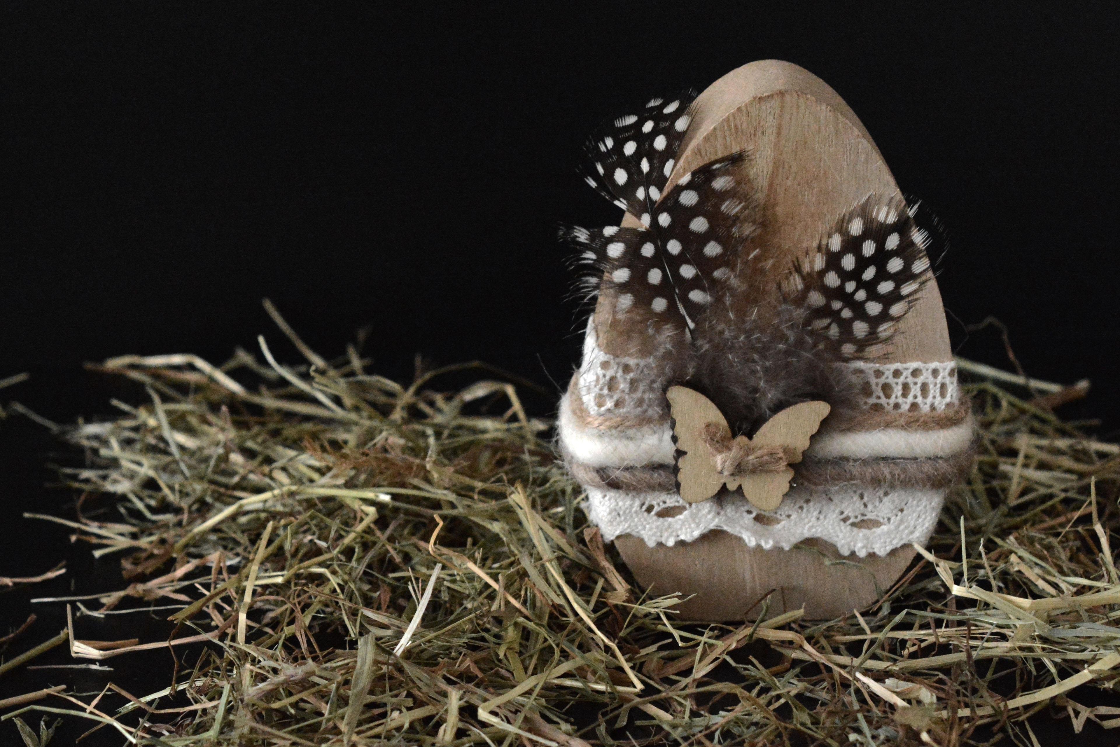 images gratuites branche oiseau bois foins d coration papillon plume oeuf d coration. Black Bedroom Furniture Sets. Home Design Ideas
