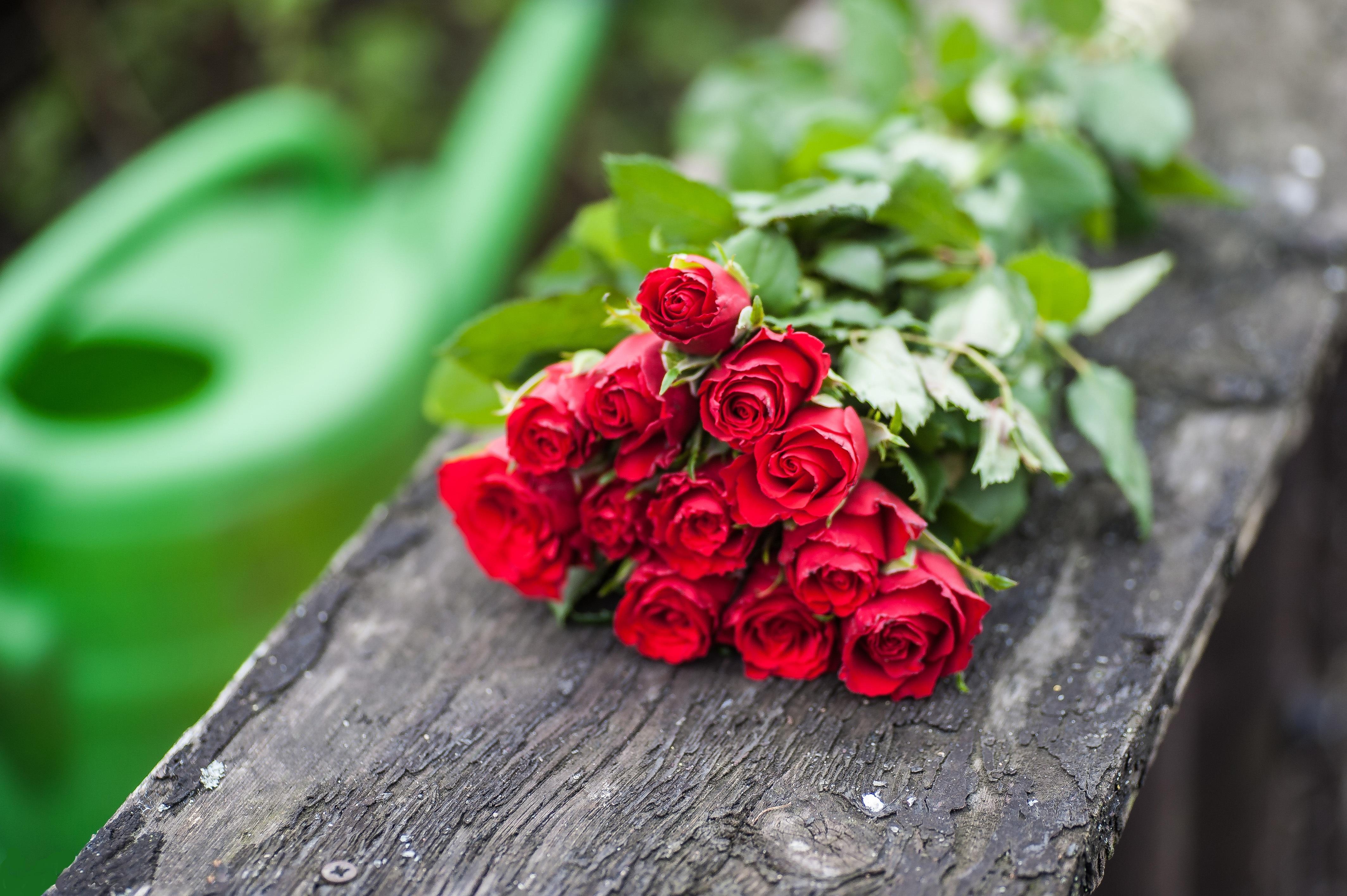 Букет роз лежит фото свое население