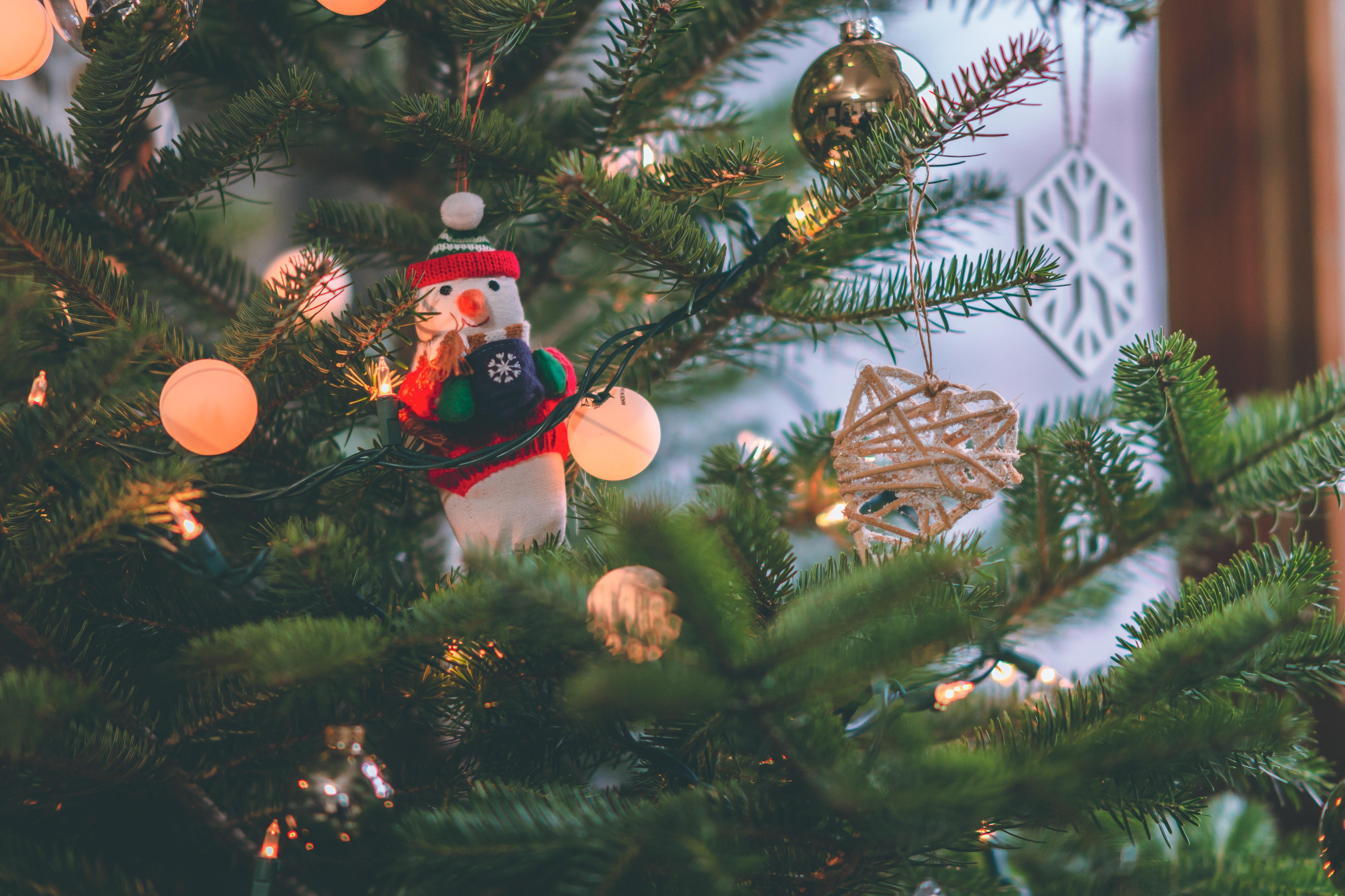 Christmas Day Celebration.Free Images Branch Celebration Christmas Balls
