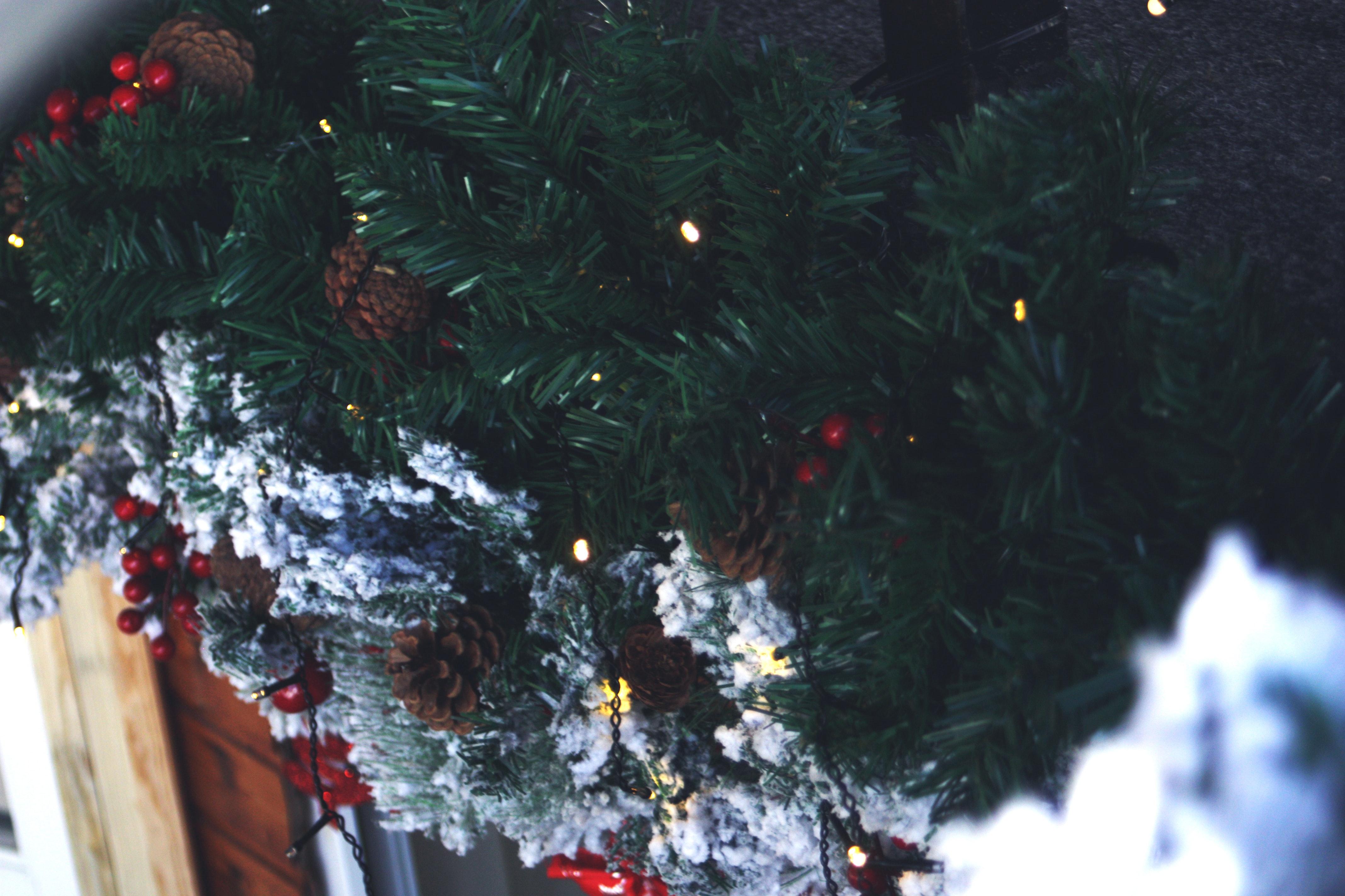 Weihnachtsbaum Ast.Kostenlose Foto Ast Feier Weihnachten Weihnachtsdekoration