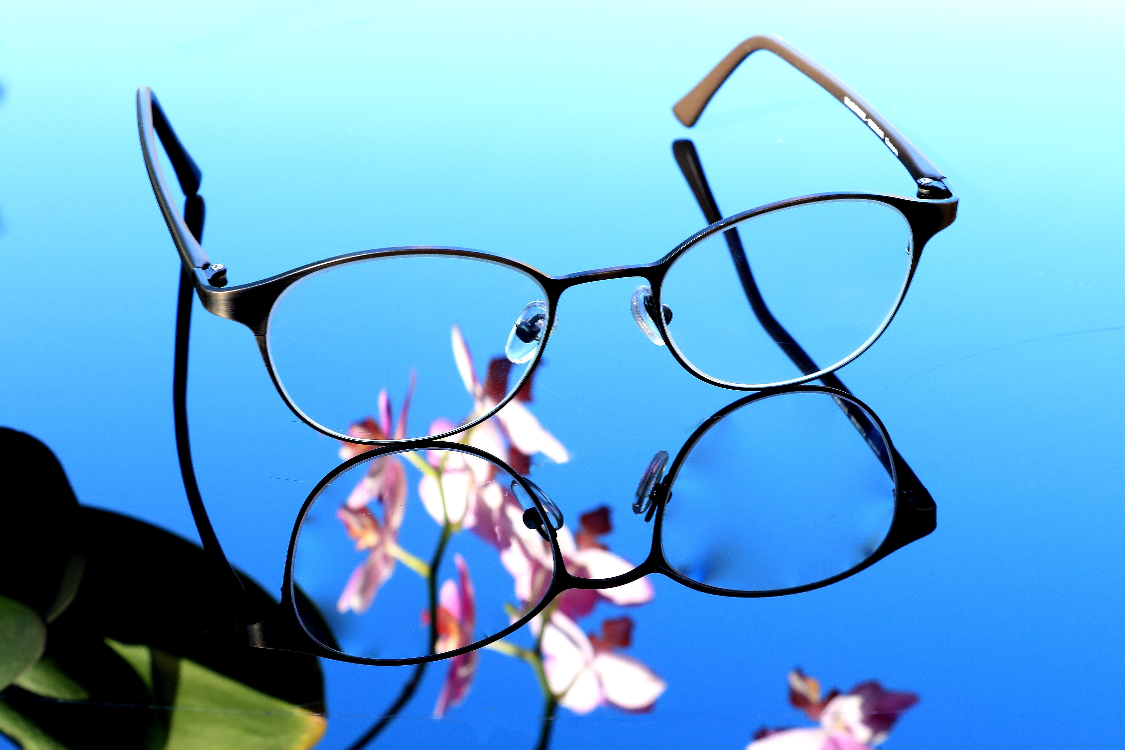 Fotos gratis : rama, flor, pétalo, línea, azul, circulo, orquídea ...