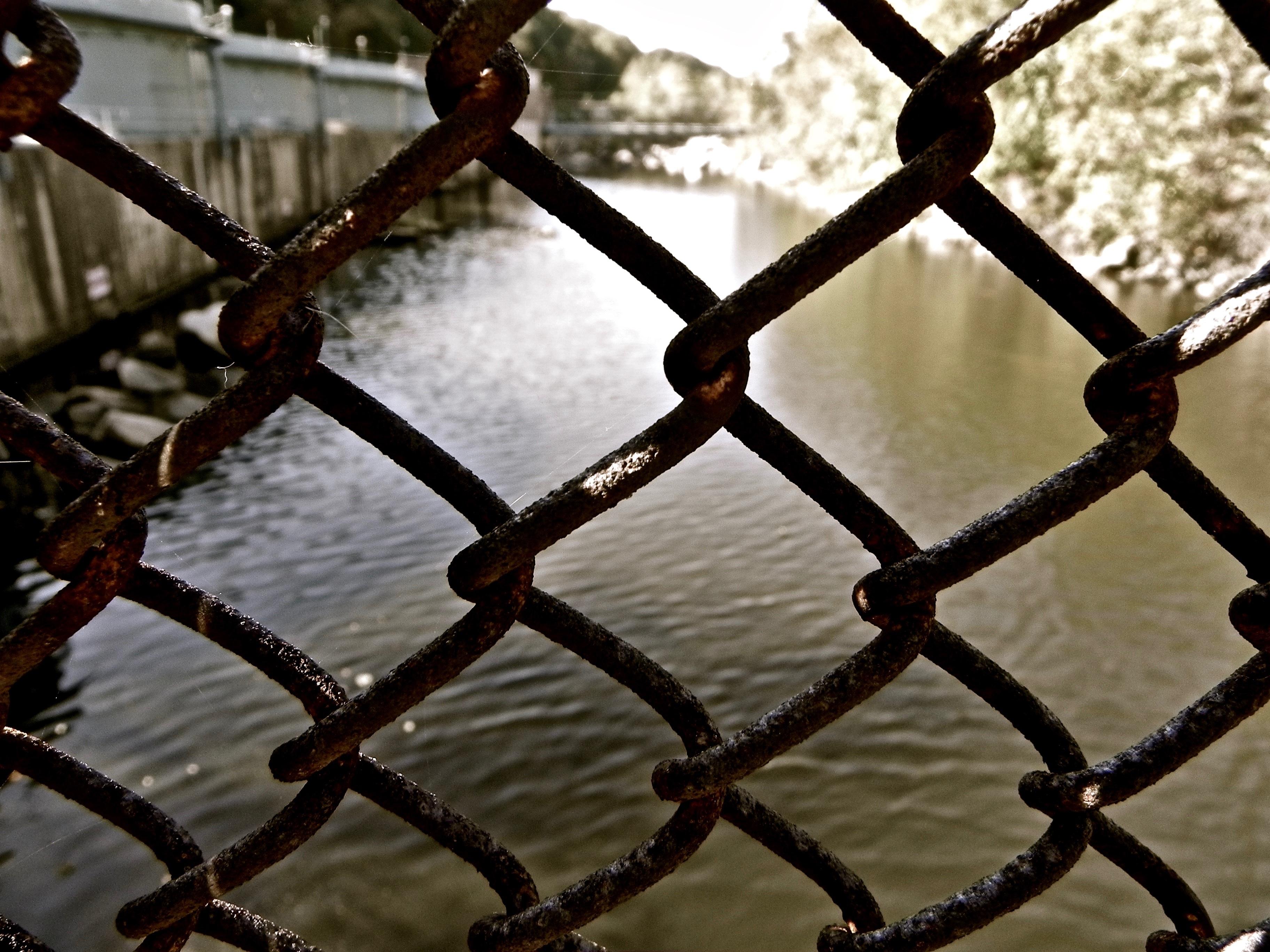 Kostenlose foto : Ast, Licht, Zaun, Brücke, Sonnenlicht, Blatt ...