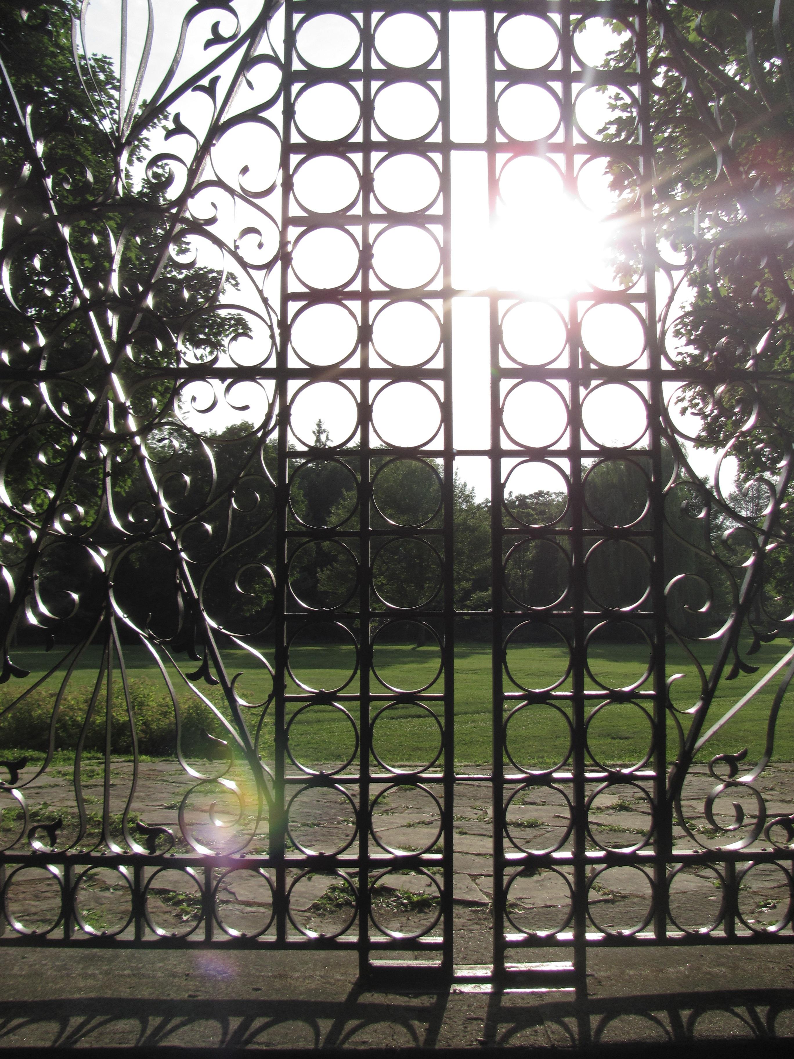 Kostenlose foto Ast Licht Zaun Jahrgang Fenster Glas