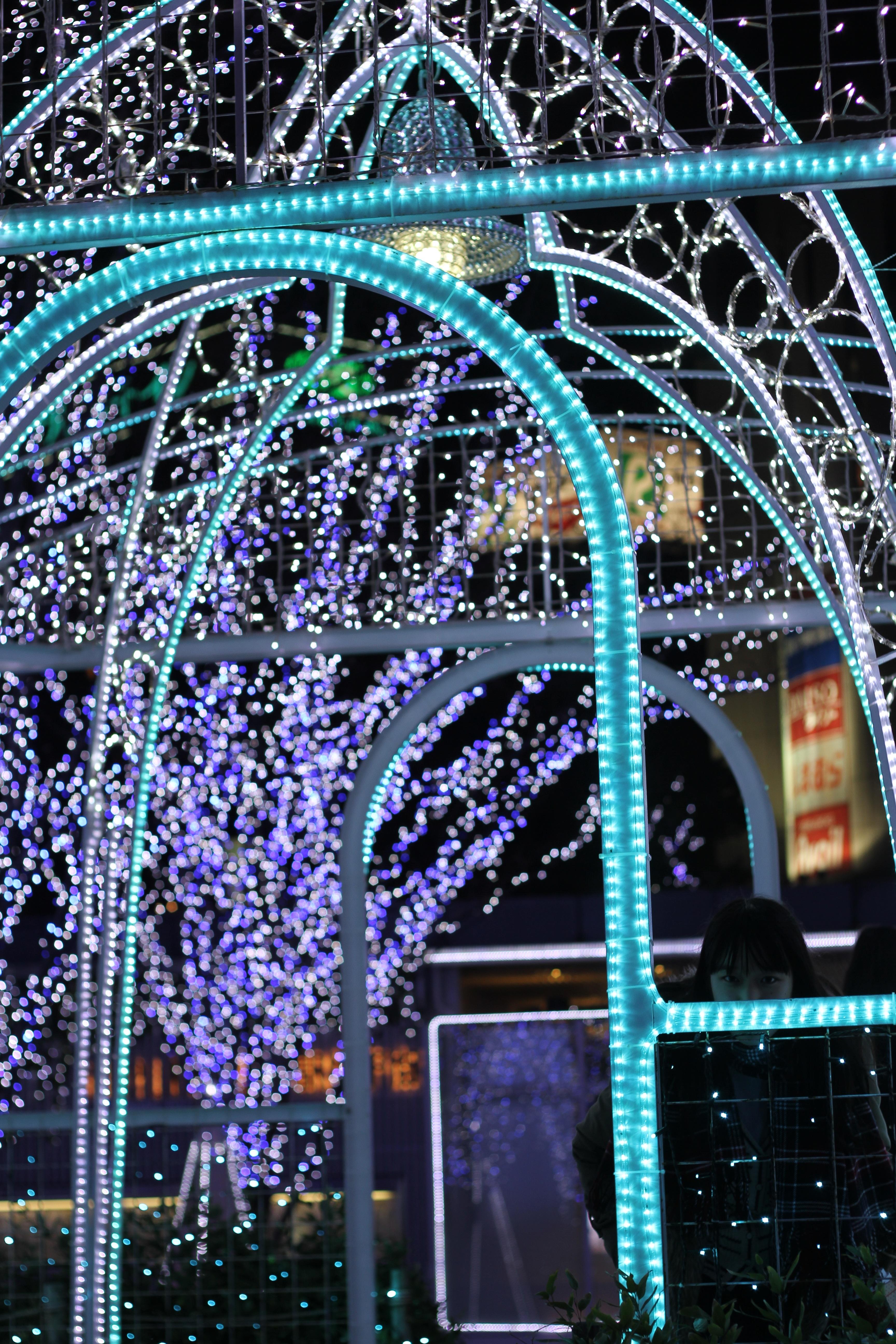 branch night flower arch christmas lighting christmas decoration illumination blue light christmas lights