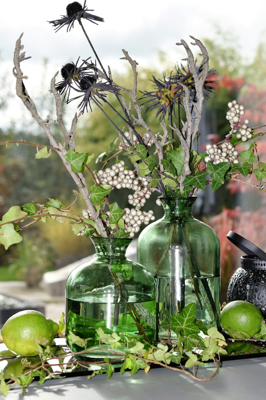Free Images Branch Plant Vase Decoration Green Produce Flora