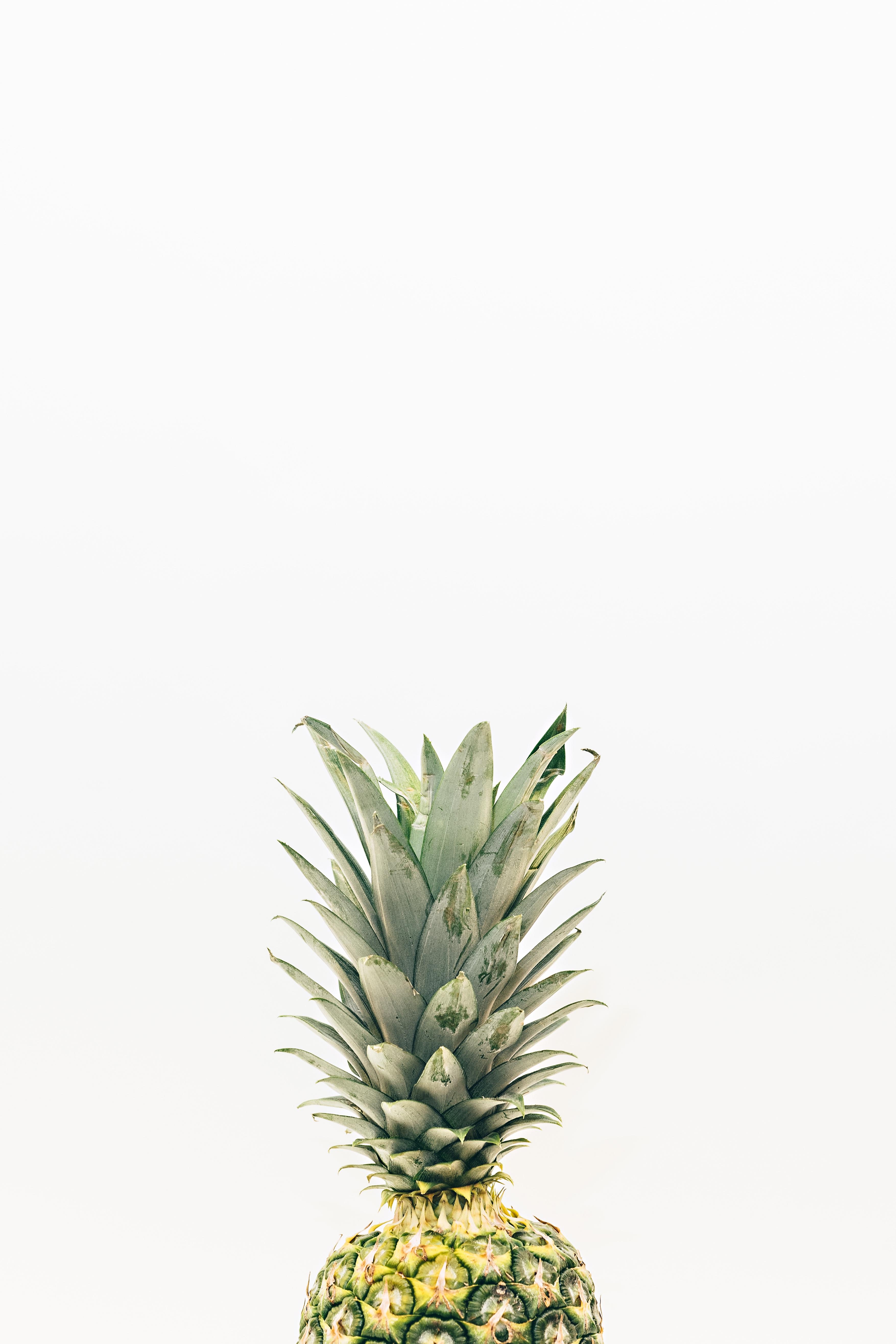 Bakgrundsbilder Gren Frukt Mat Producera Ananas