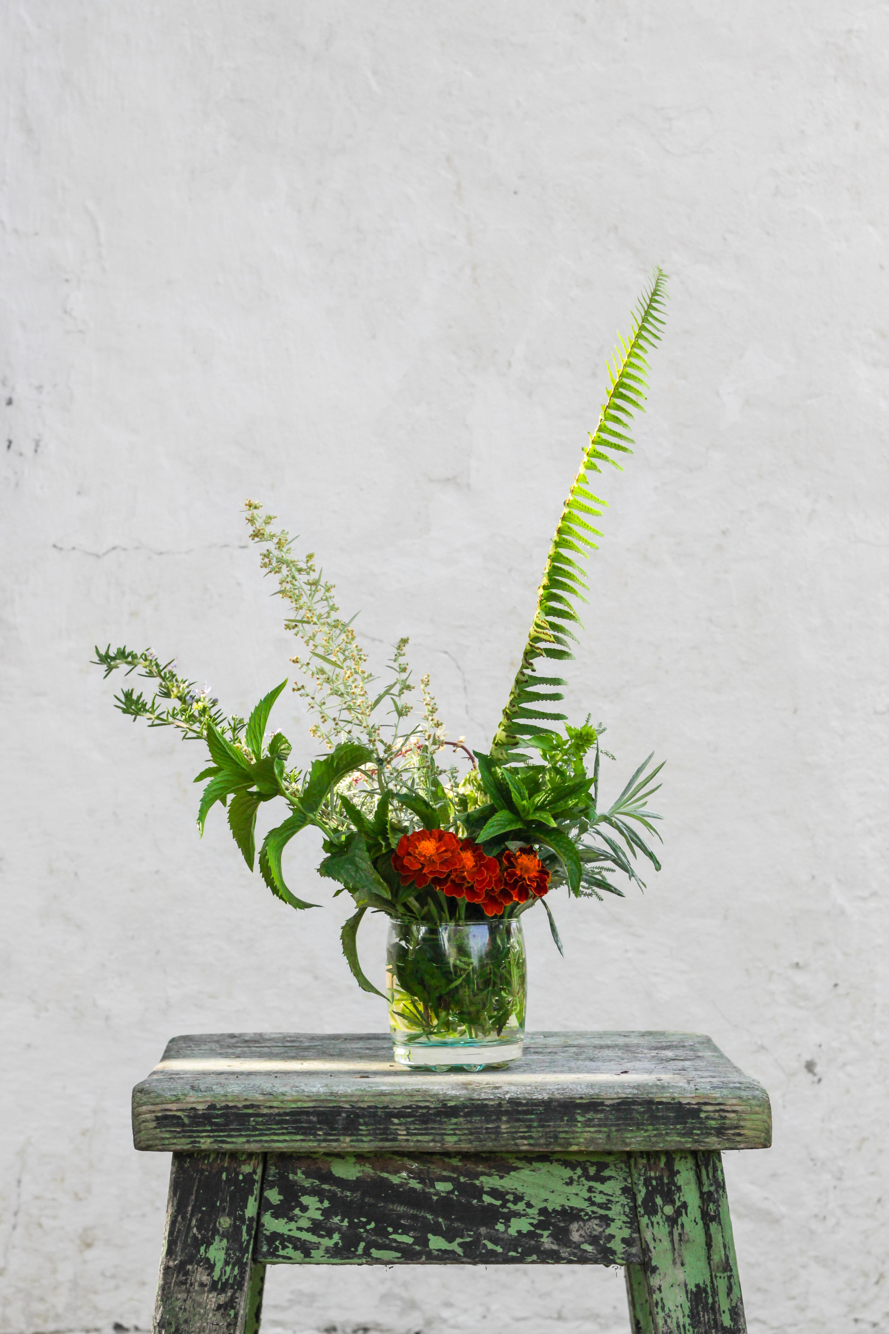 images gratuites branche plante feuille fleur tabouret verre vase vert botanique. Black Bedroom Furniture Sets. Home Design Ideas