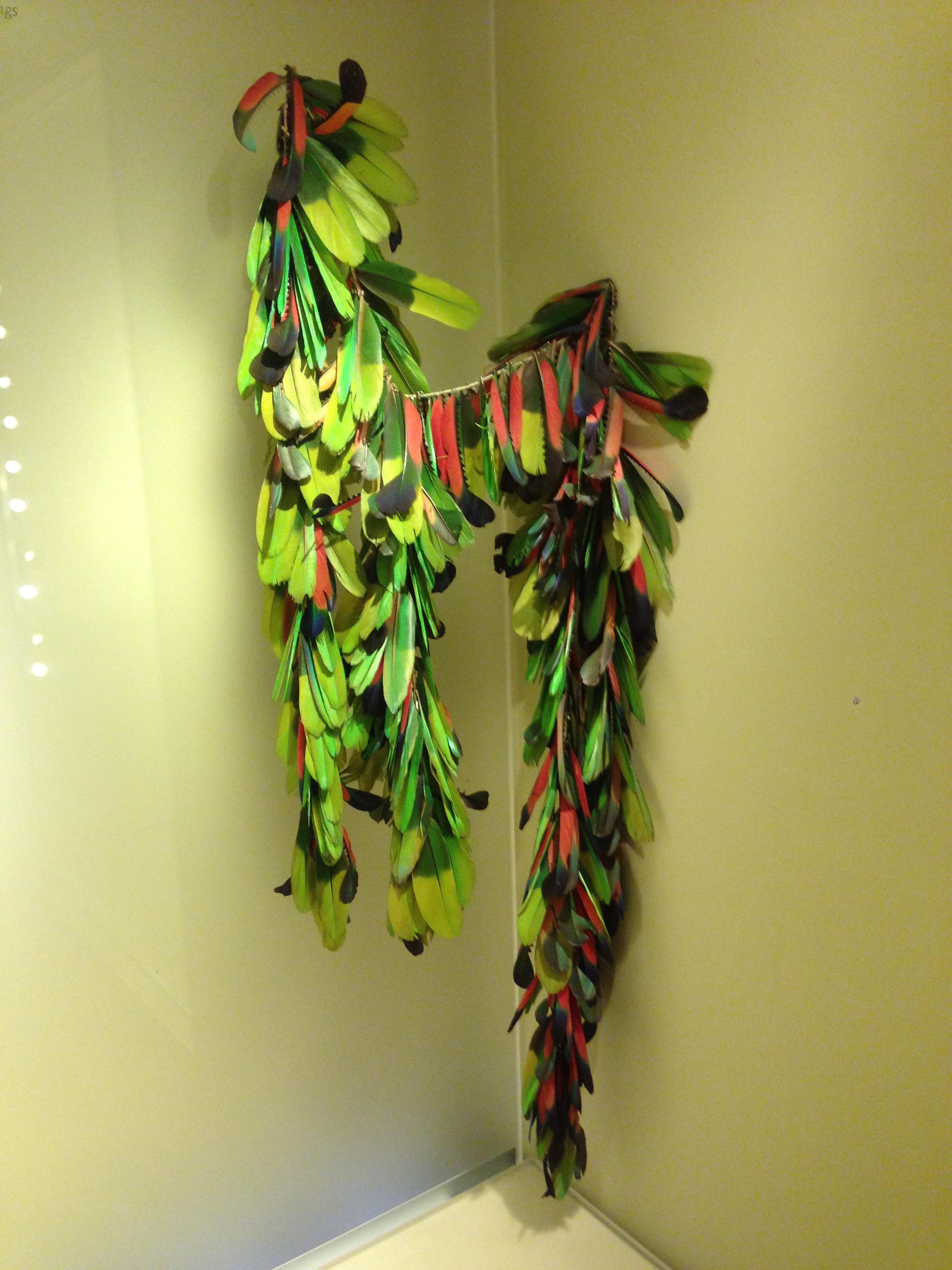 Free Images : branch, plant, leaf, flower, window, green, color ...