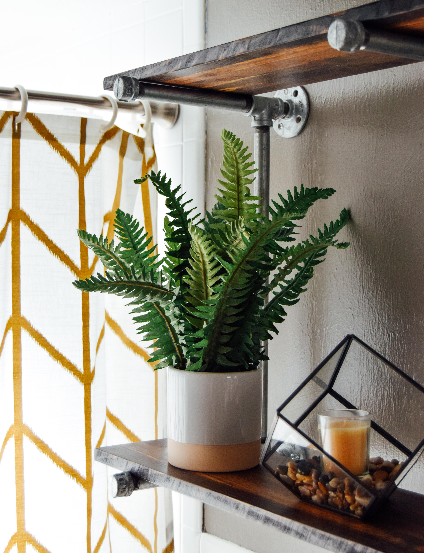 images gratuites branche bois produire plante d 39 appartement design d 39 int rieur couverture. Black Bedroom Furniture Sets. Home Design Ideas