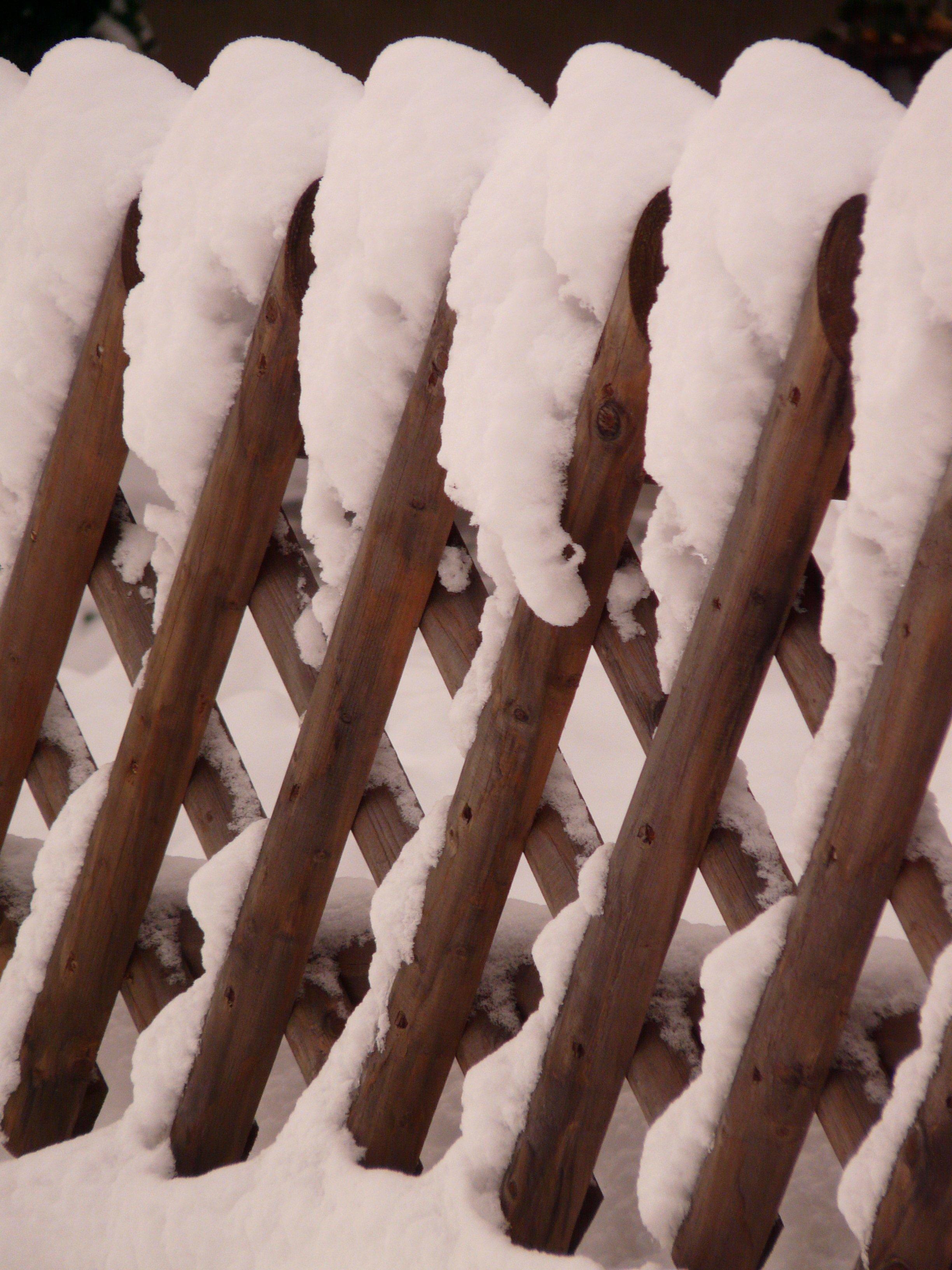 Kostenlose foto Ast Schnee kalt Winter Zaun Holz Weiß