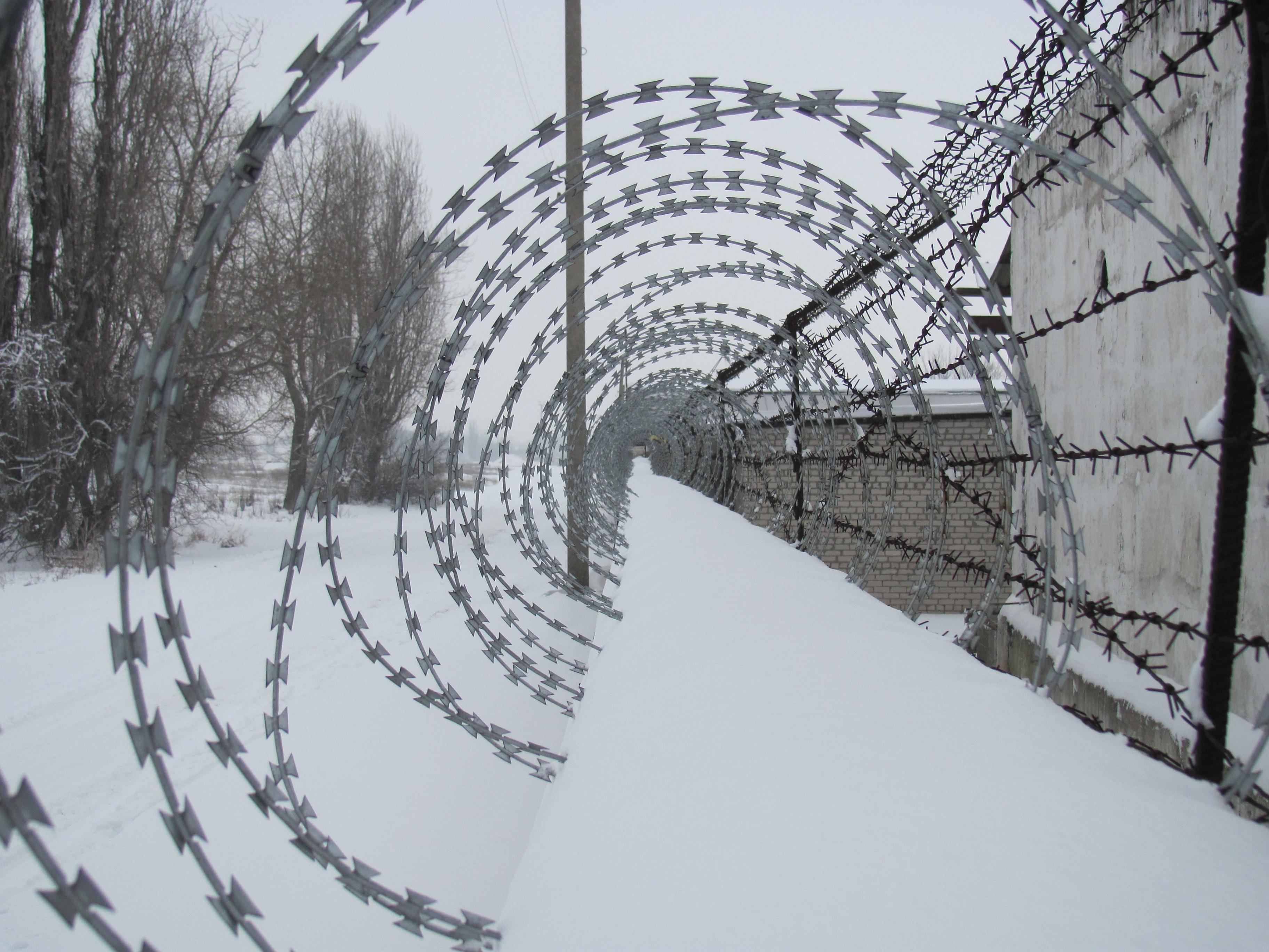 Kostenlose foto : Ast, Schnee, Winter, scharf, Zaun, Brücke, Draht ...