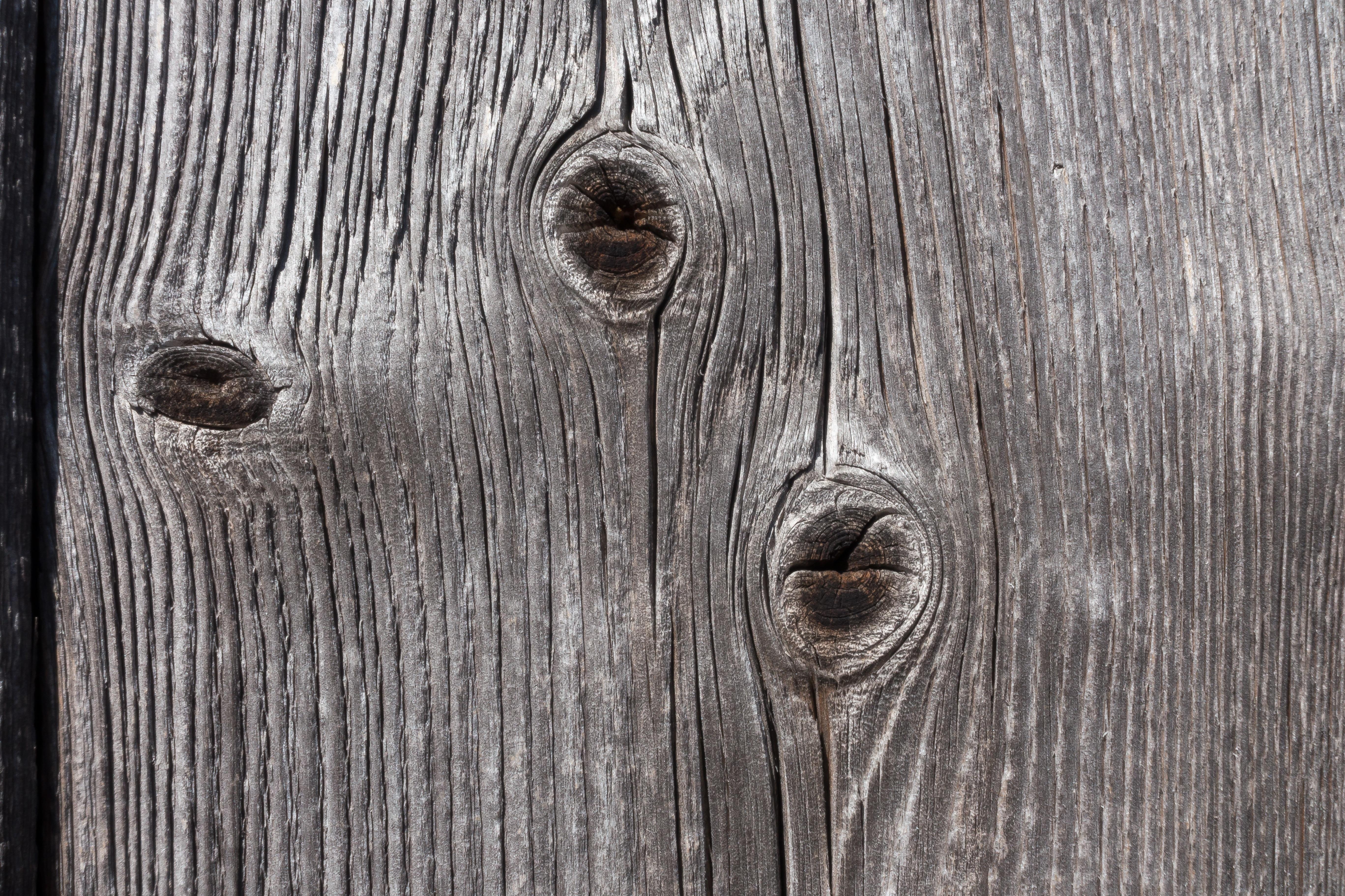 Kostenlose foto : Ast, Struktur, Tafel, Holz, Textur, alt, Scheune ...