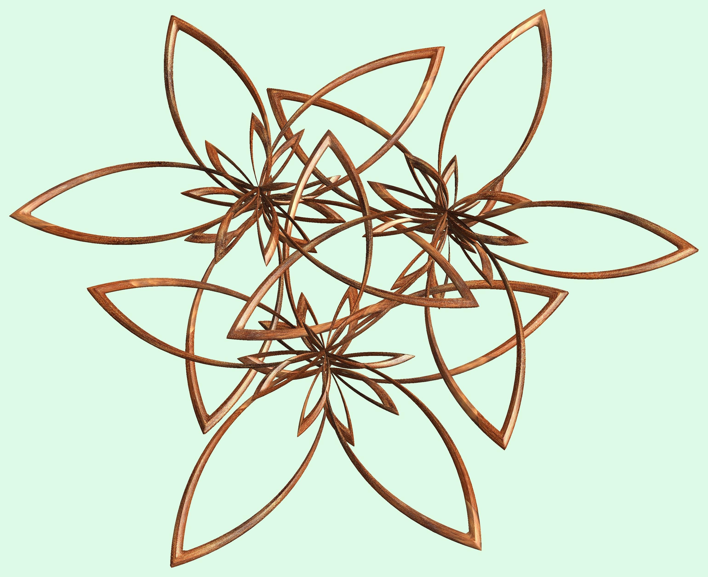 Fotos gratis : rama, estructura, textura, hoja, patrón, línea ...