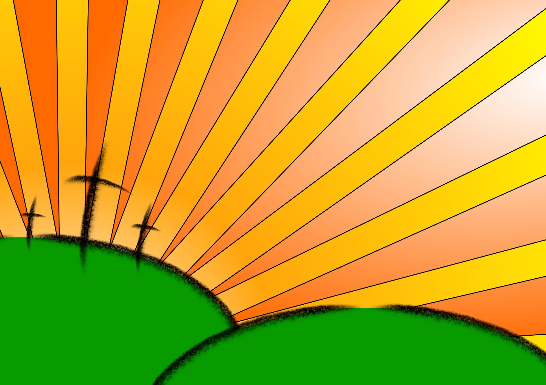 Fotos gratis : rama, luz de sol, hoja, flor, celebracion, patrón ...