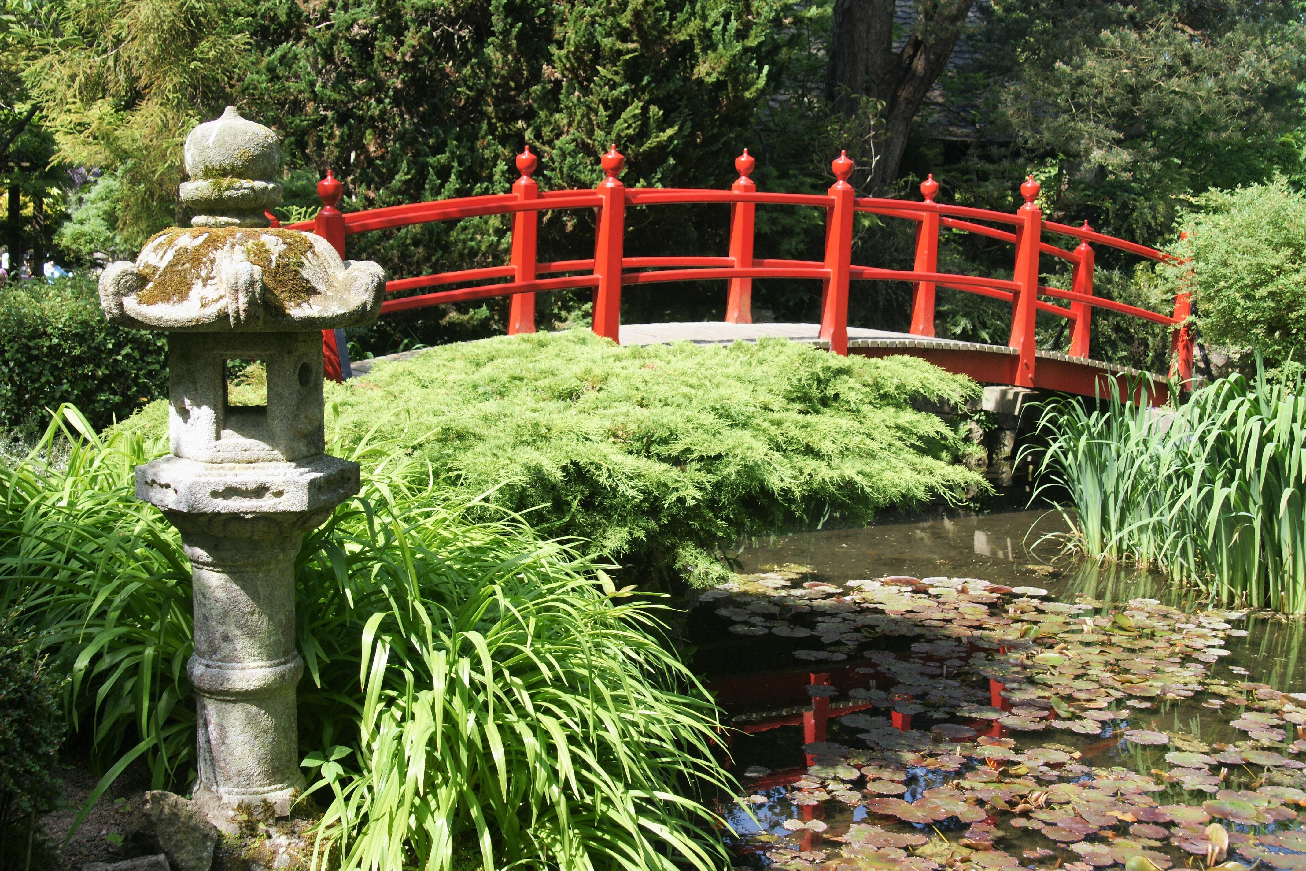 Images gratuites fleur parc arri re cour japon for Figuras para jardin zen