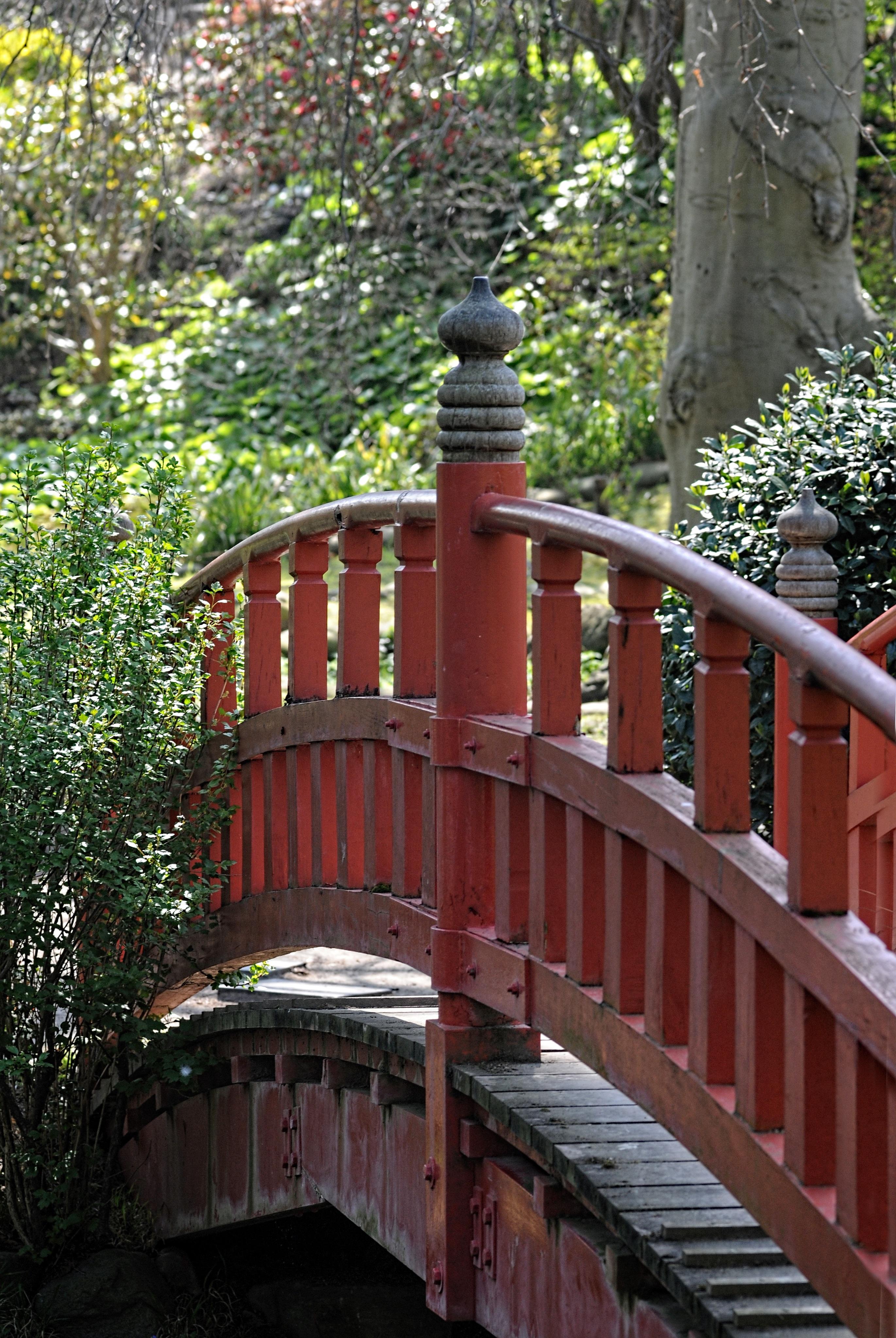 Images Gratuites Pont France Arriere Cour Jardin Japonais Pont