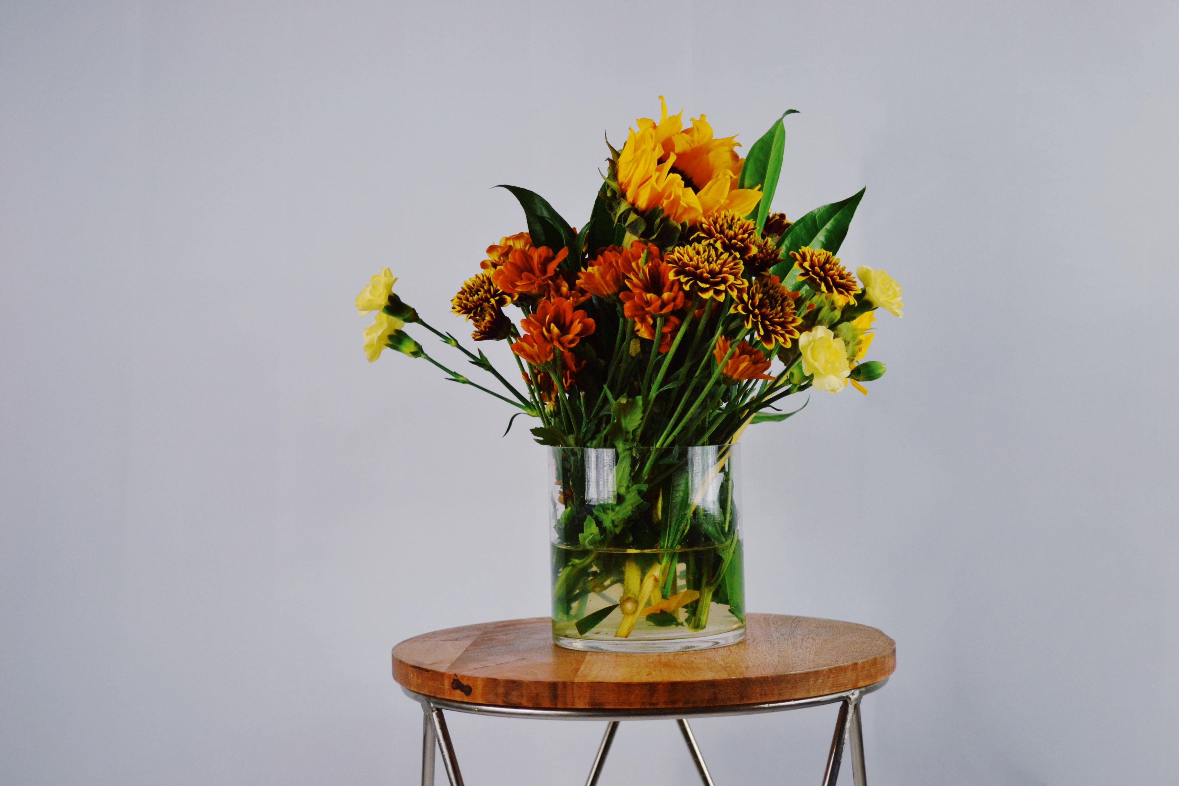 Poze Luminos A închide Colorate Decor Floră