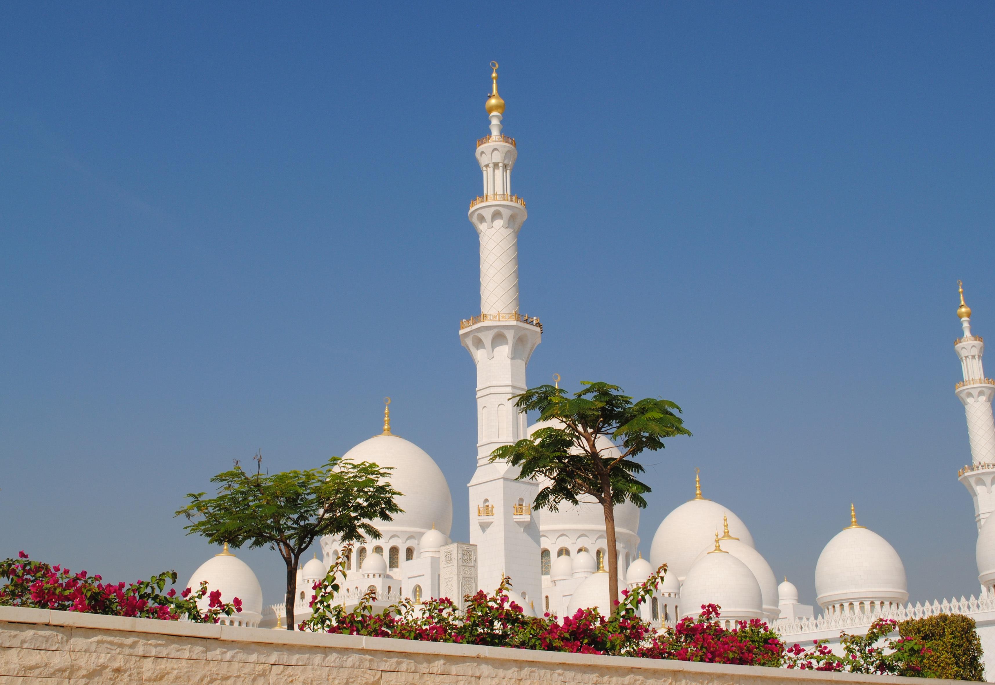 edificio monumento torre punto de referencia lugar de adoracin mezquita islam arbica orientar abu dhabi jeque