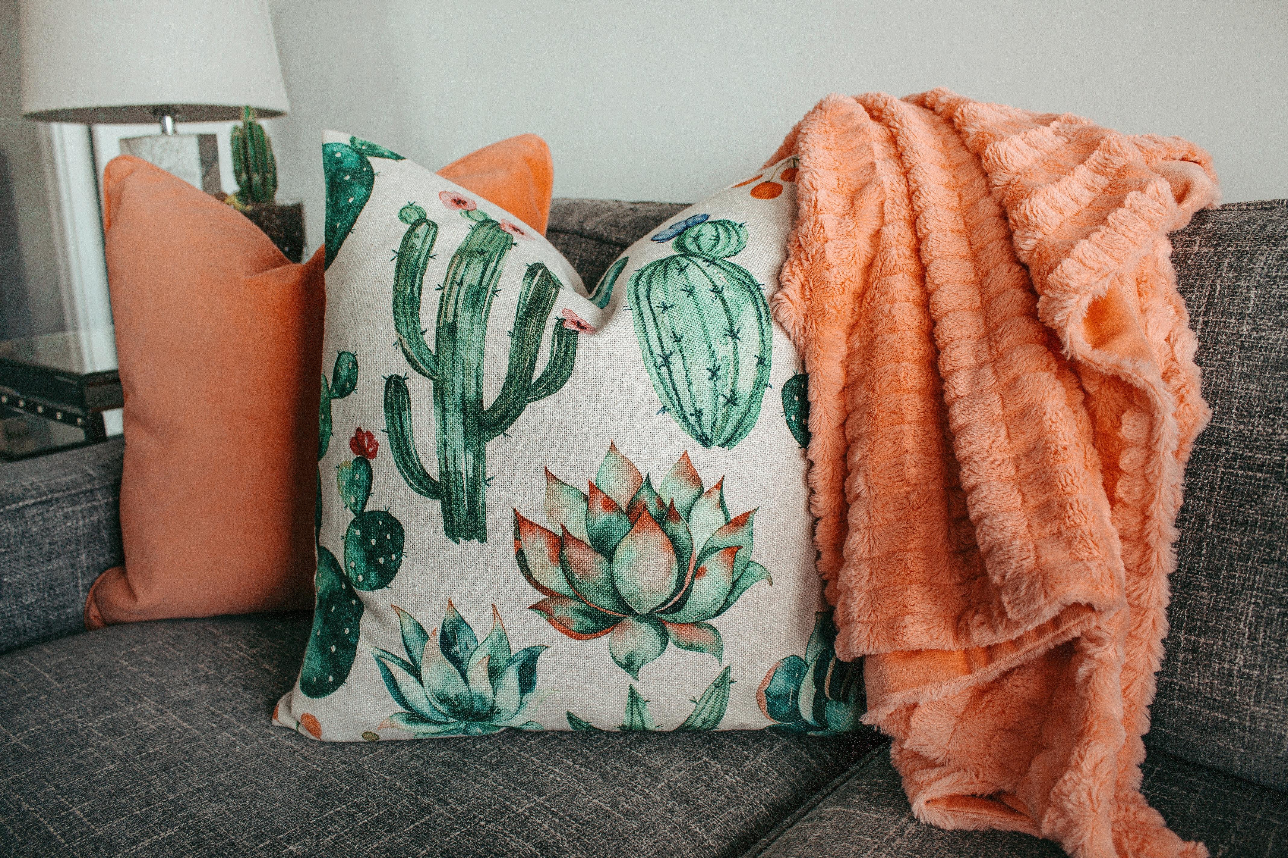 76c34f34810c Free Images   cactus plant
