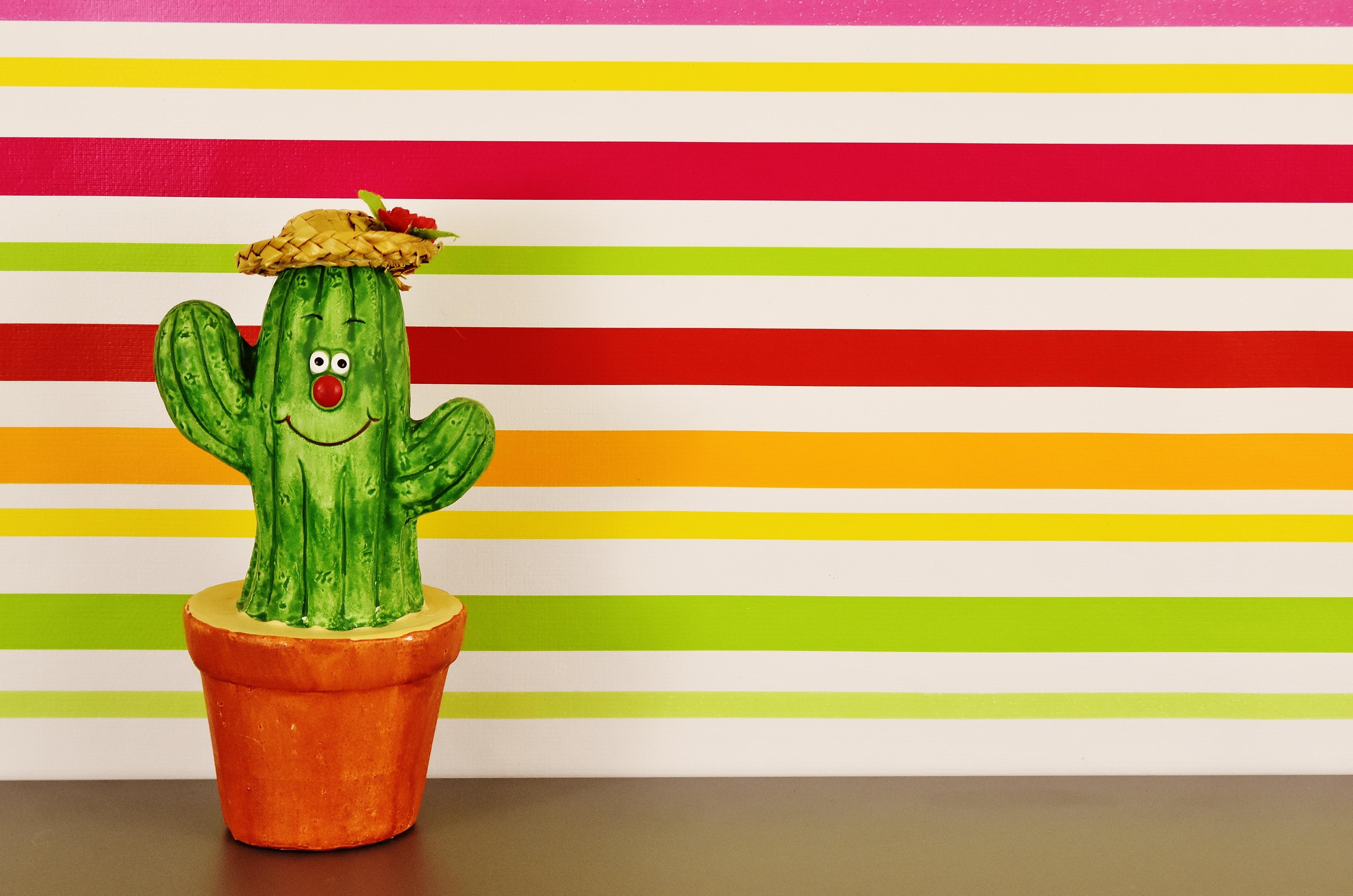 этом кактус смешной картинки юбилею выпускаются праздничные