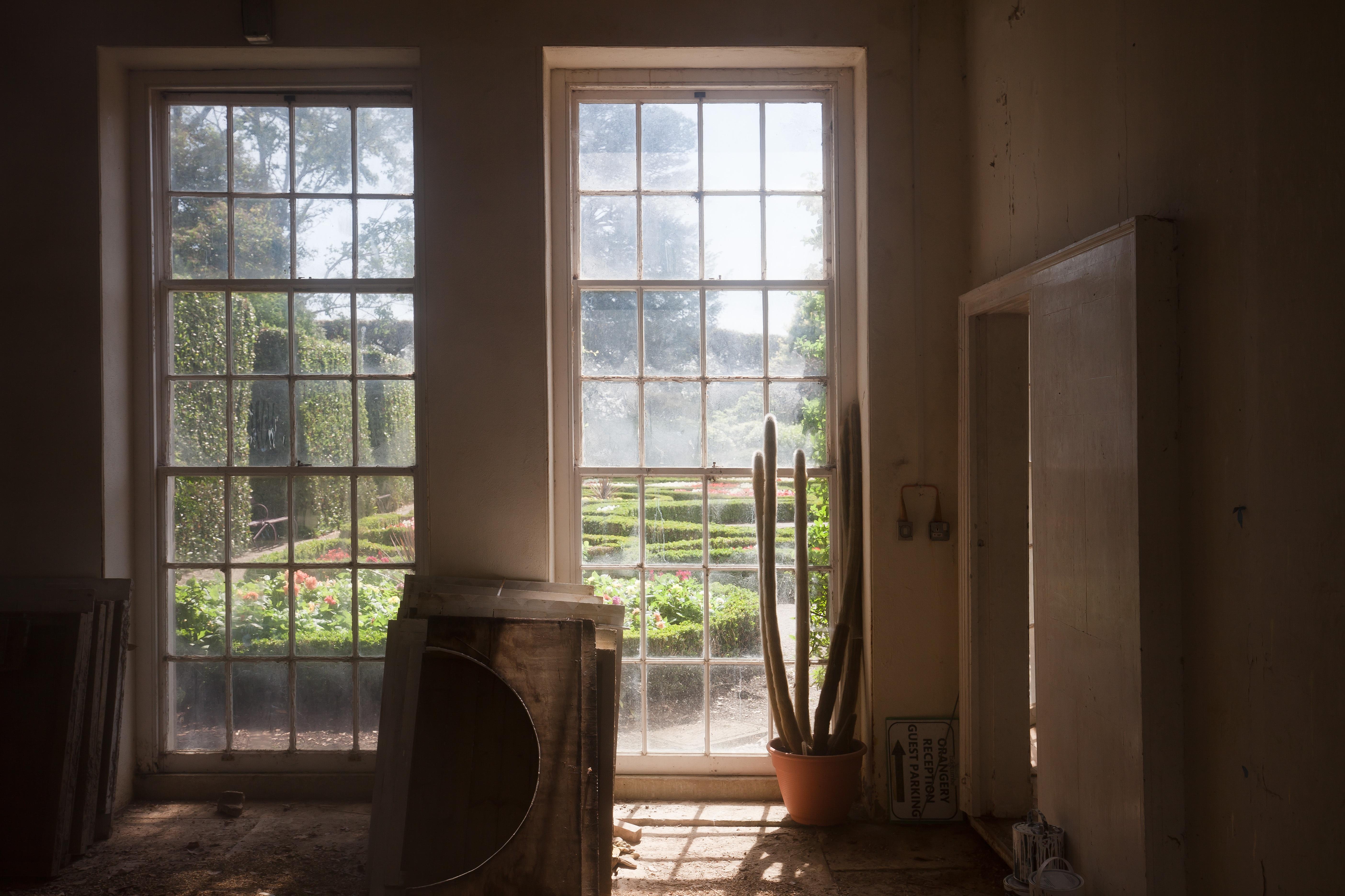 무료 이미지 : 선인장, 목재, 집, 바닥, 창문, 더러운, 공간, 공원 ...