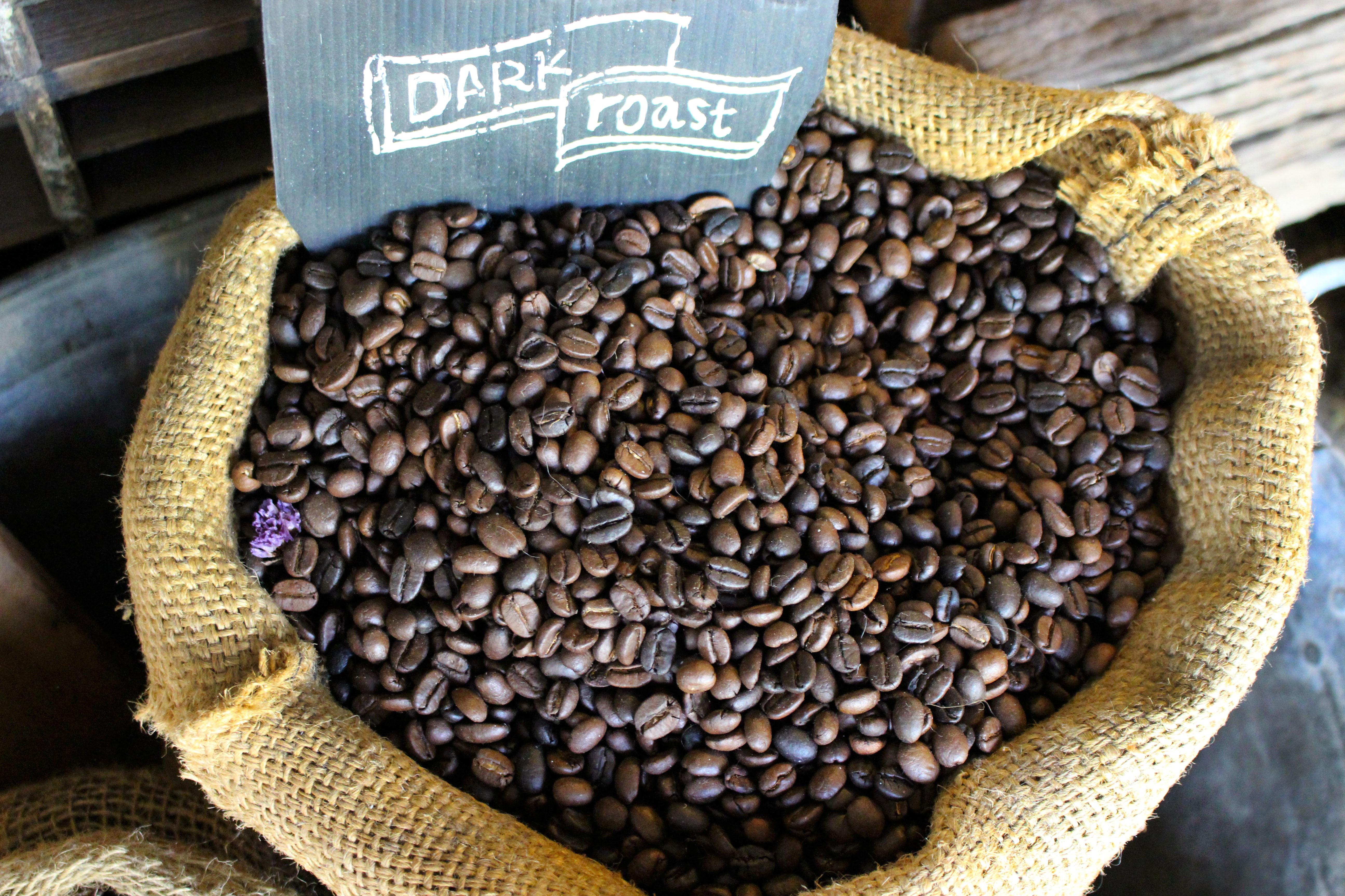 свои случаи из кофейного зерна картинки фекалии, выделяемые клещом