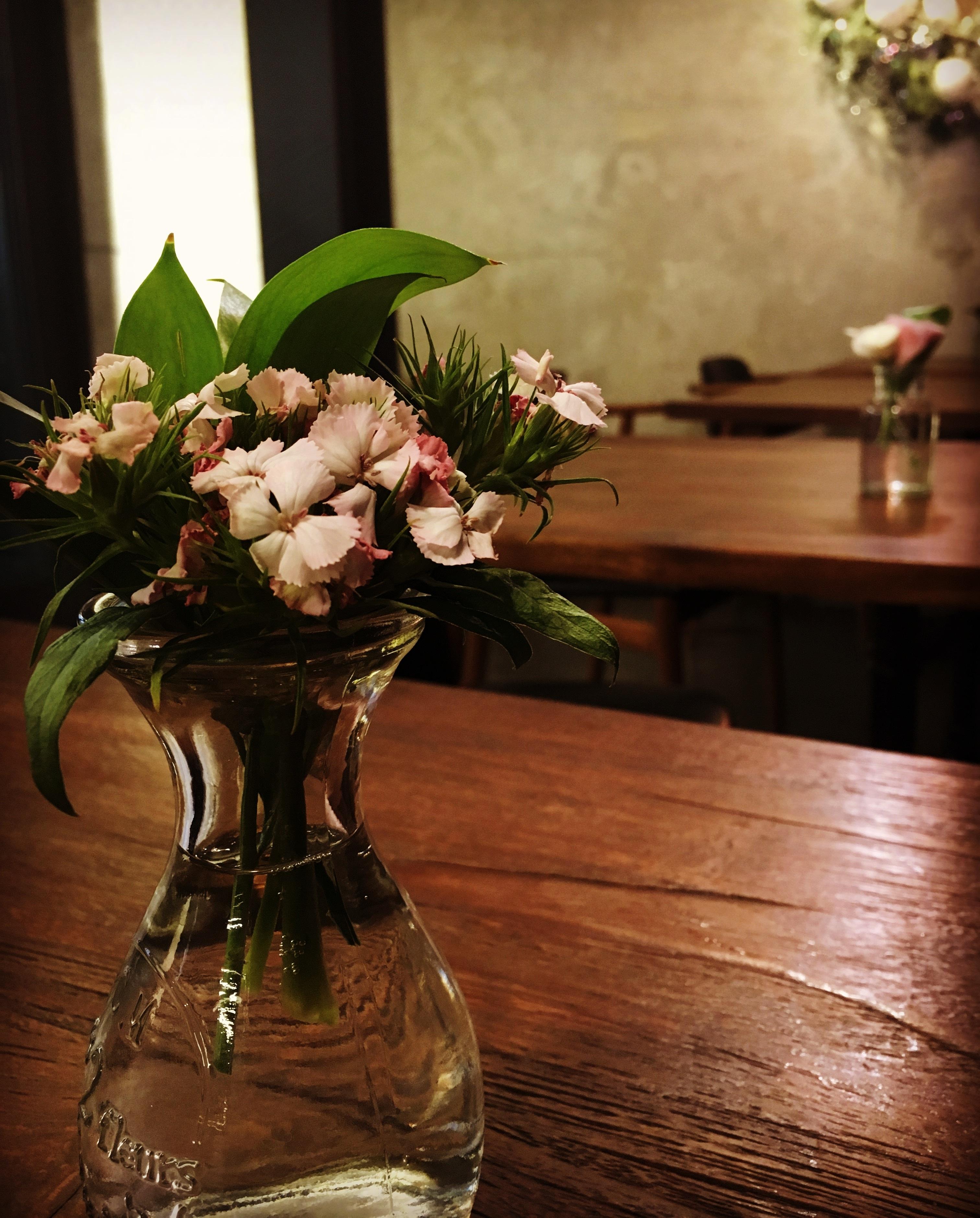 Fotoğraf Kafe Bitki çiçek Bahar Gelin Natürmort Boyama