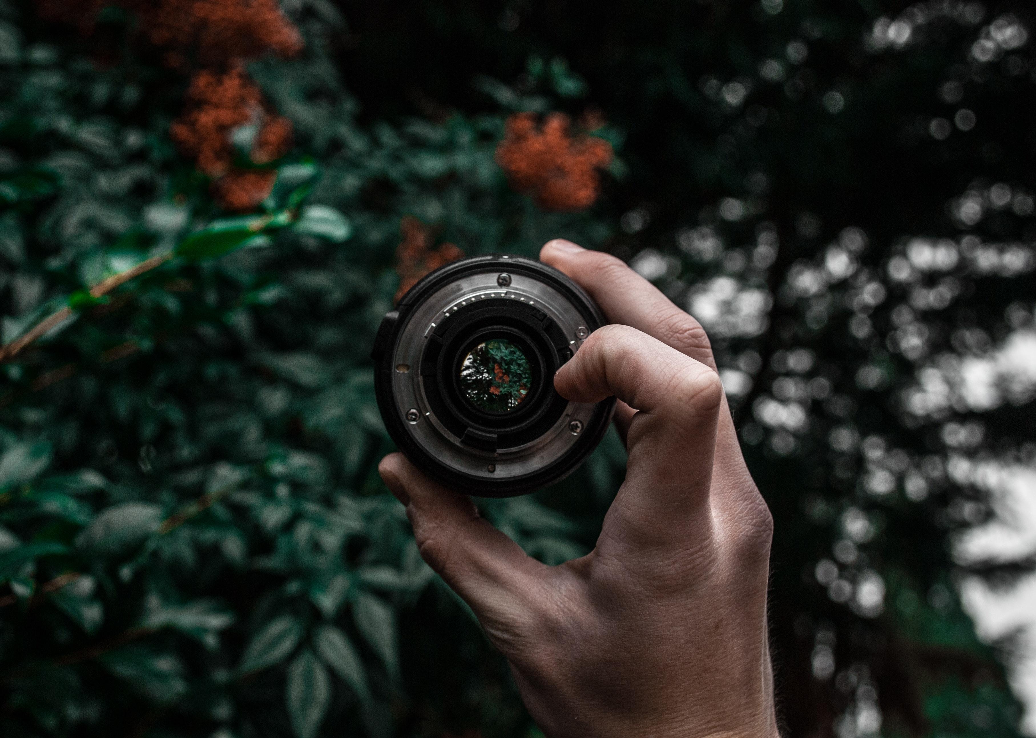 успокаивает снижает фотоаппарат четкость снимков комфортно перемещаться