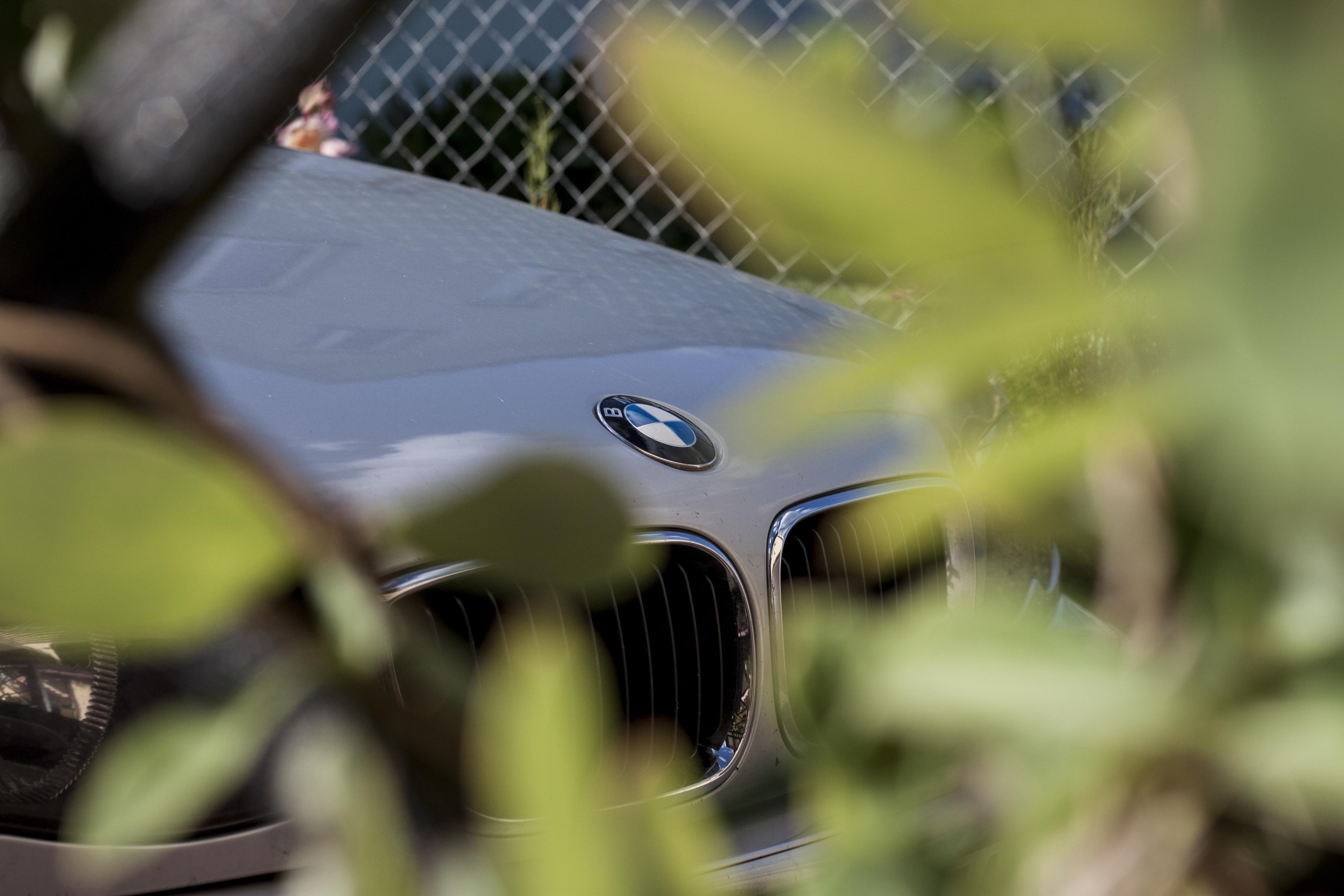 photo up vehicle bmw car green auto images leaf close free logo en mask the macro sunglasses photography