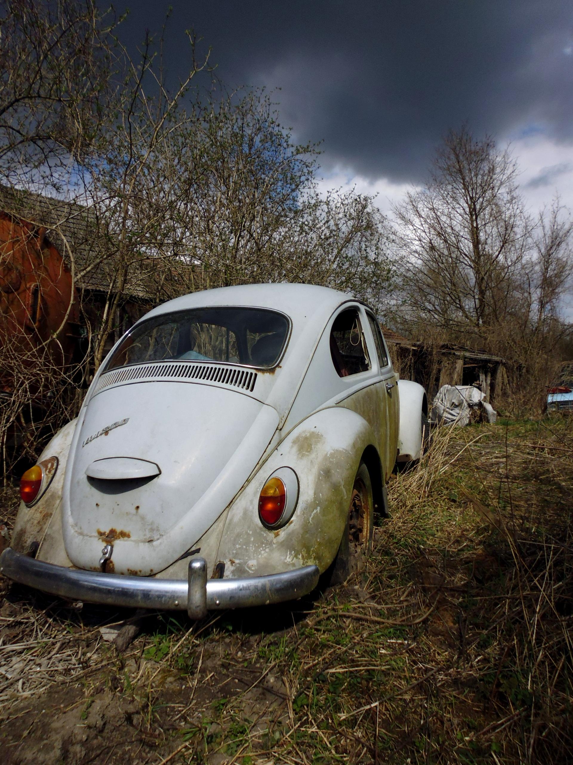 images gratuites roue vieux v hicule auto voiture ancienne vw beetle vieil homme. Black Bedroom Furniture Sets. Home Design Ideas