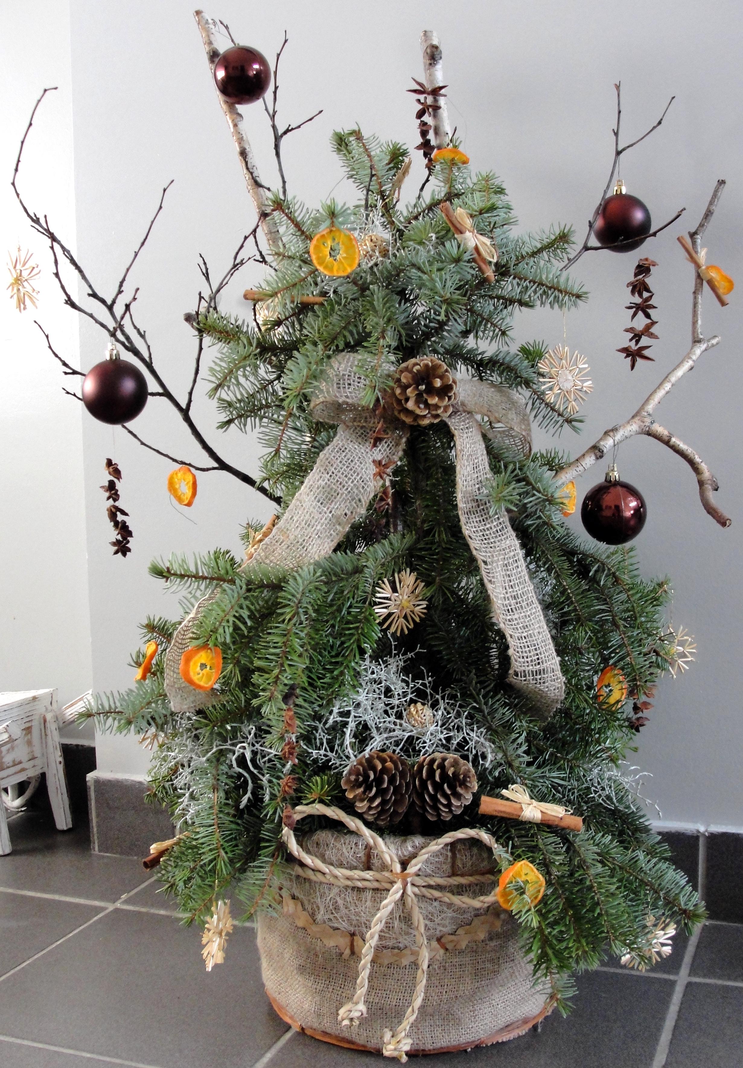 Free Images Christmas Decoration Flowerpot Christmas Tree Plant