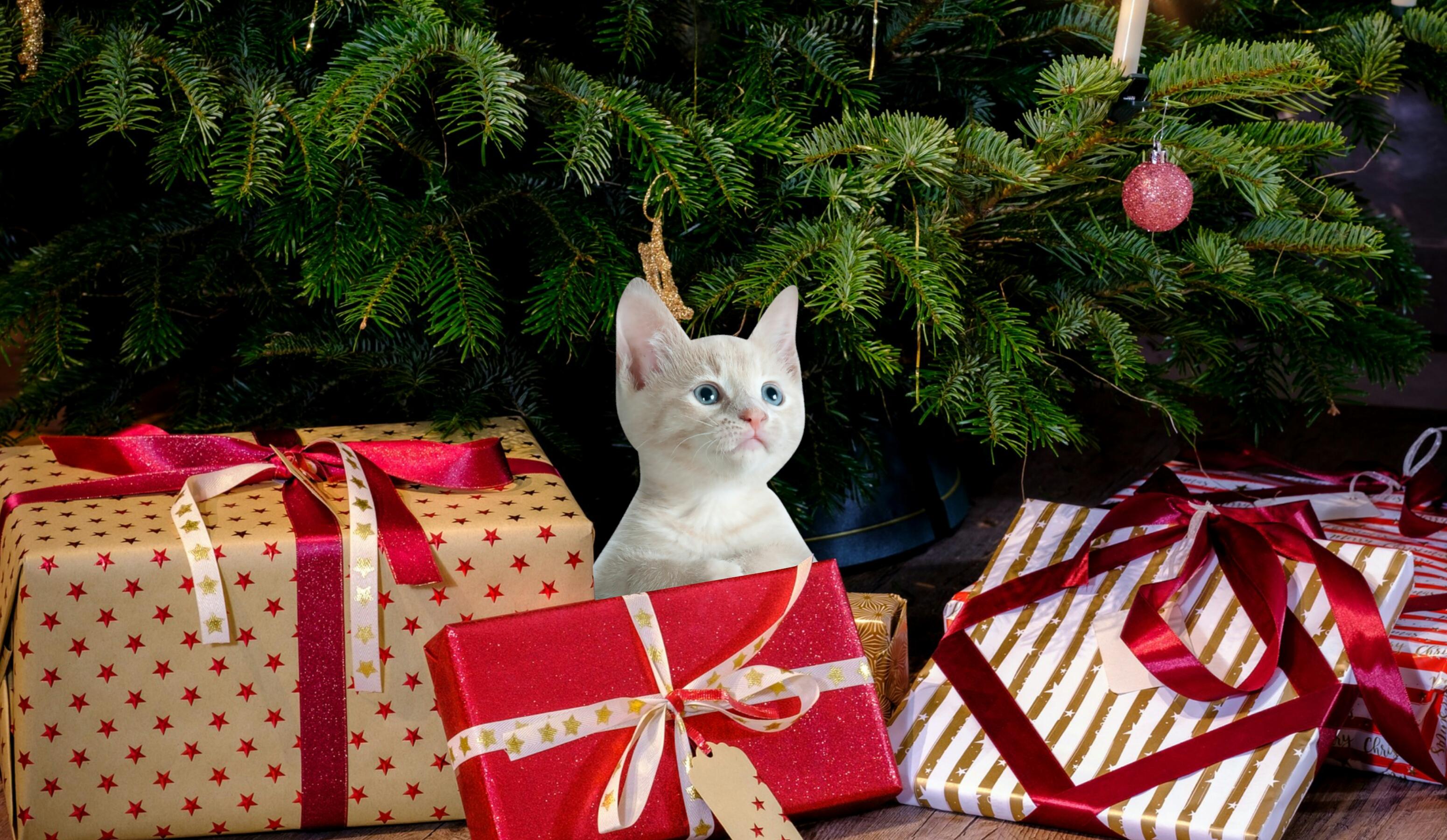 4367f089b8 Obrazy   Vianoce