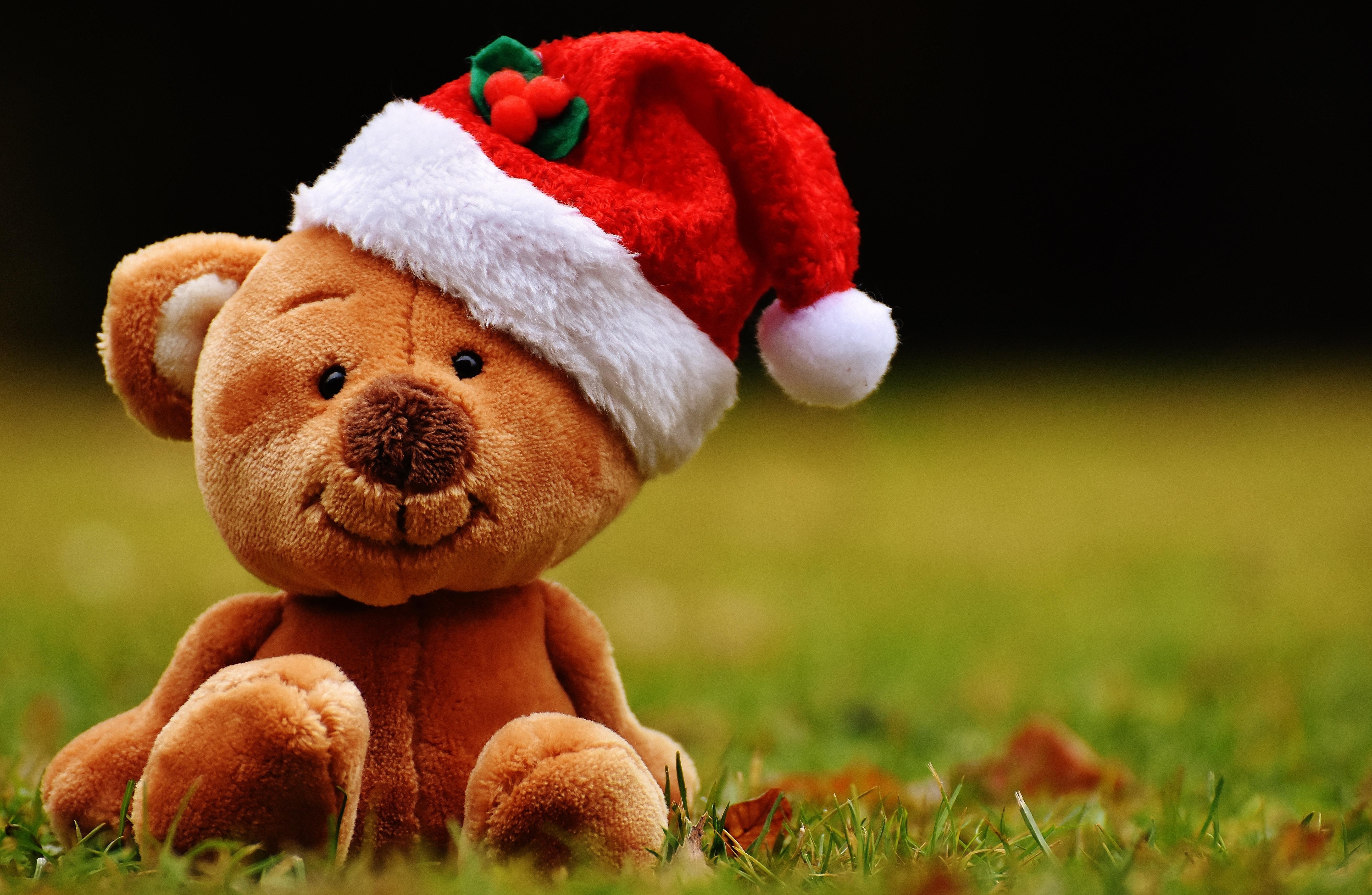 Teddy Weihnachten.Kostenlose Foto Weihnachten Spielzeug Teddybär Santa Hut