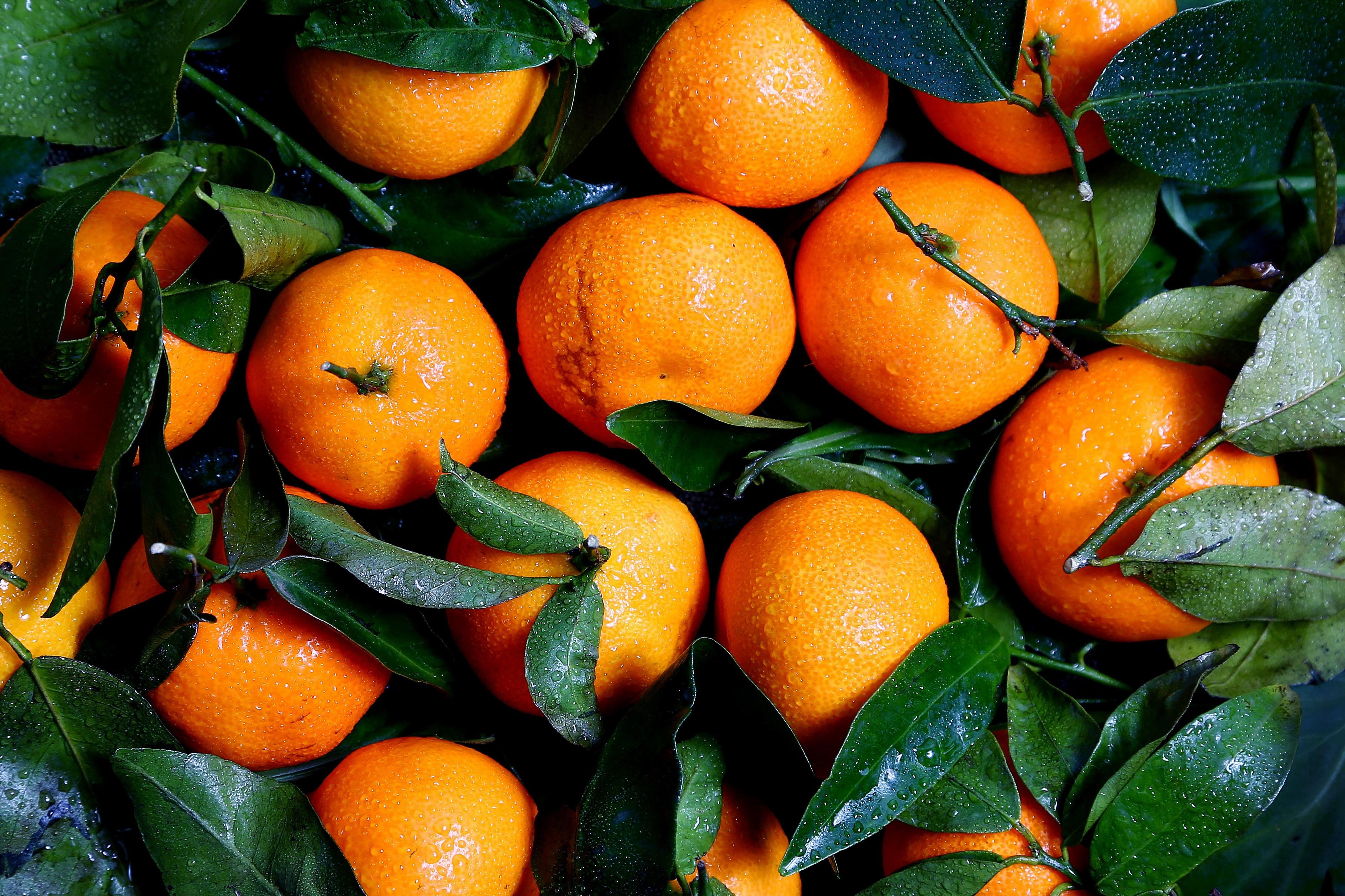 для фото апельсинов на рабочий стол указал