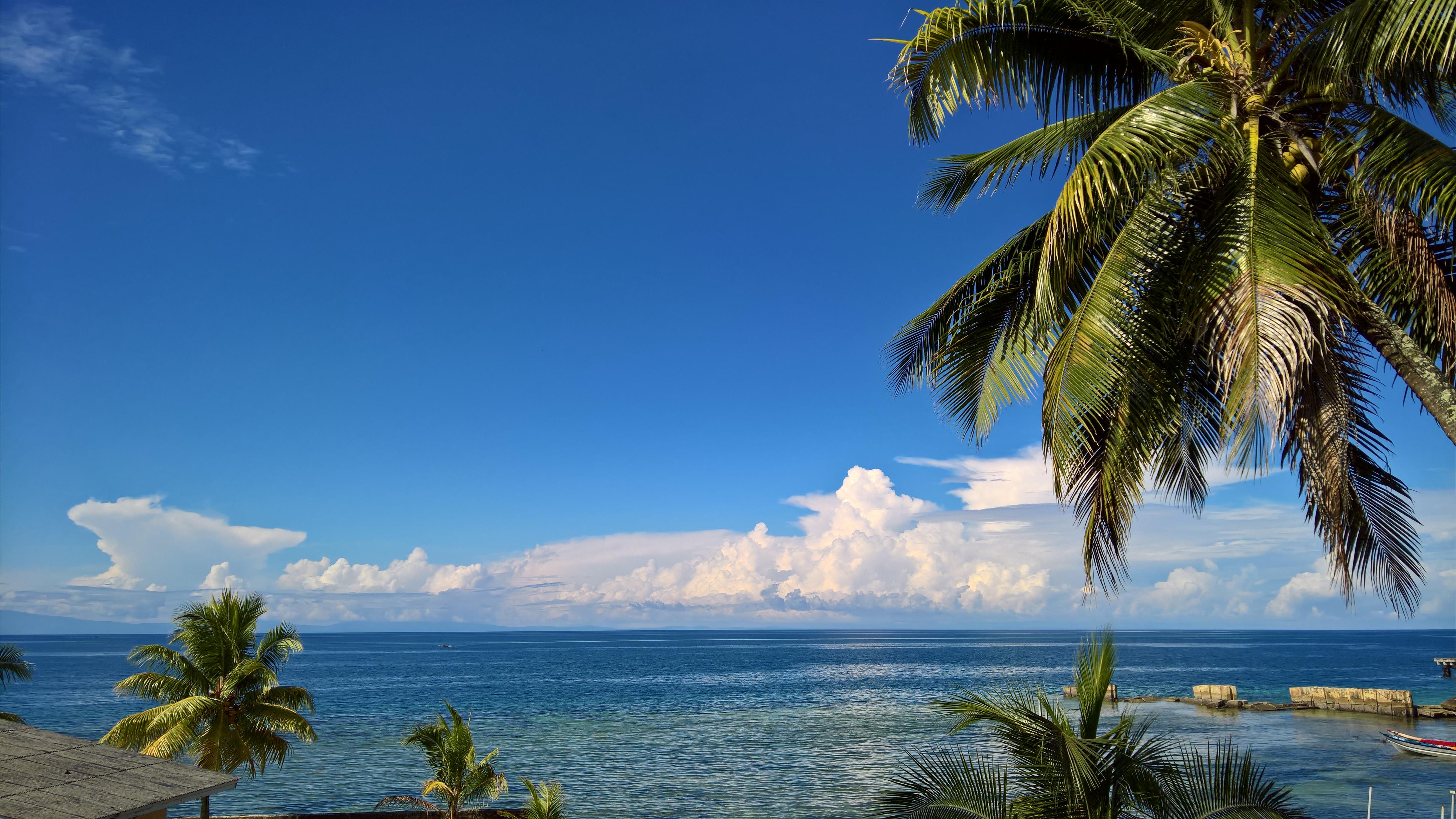 Immagini Belle Nube Cielo Mare Noce Di Cocco Natura Chiaro