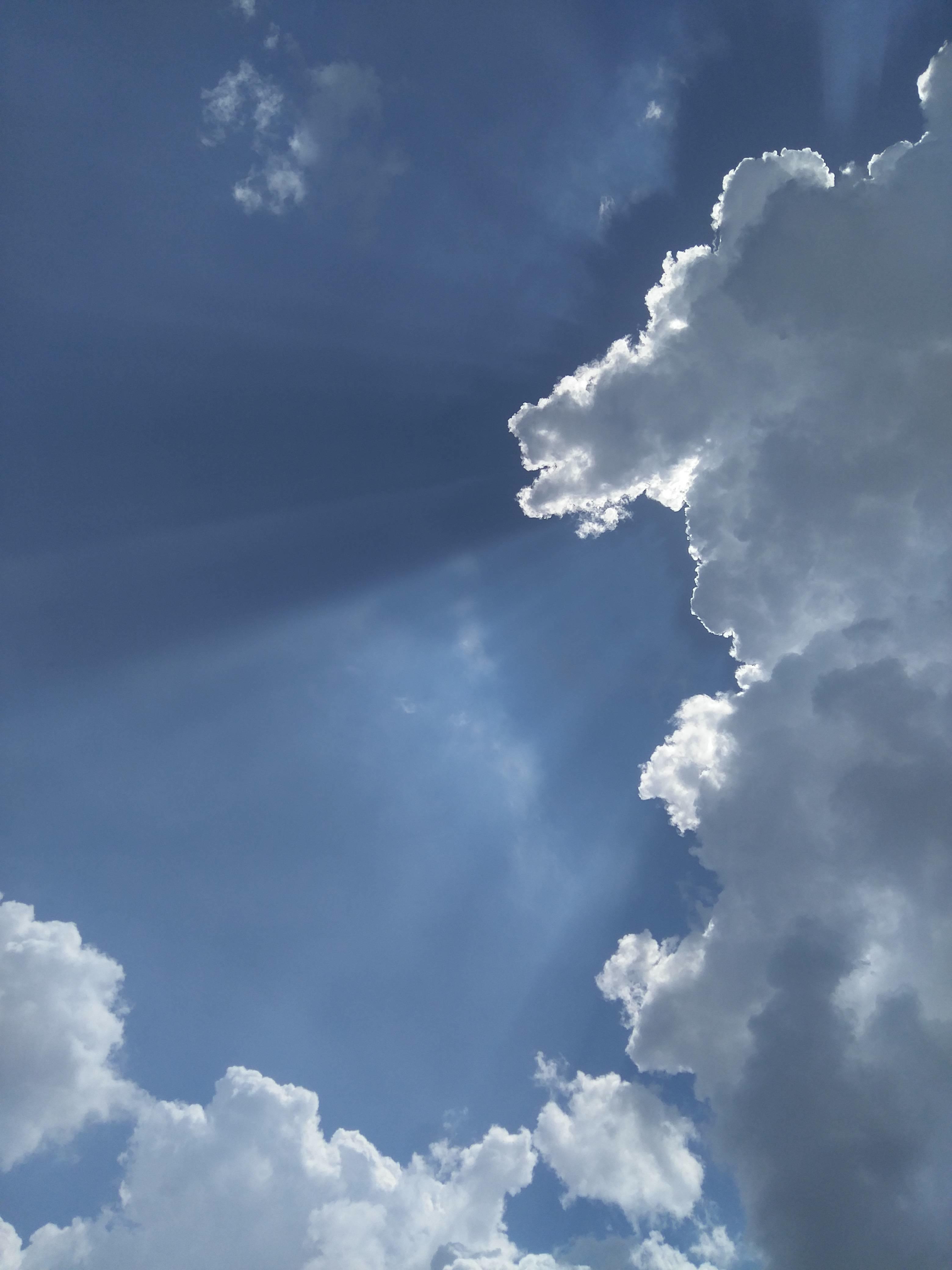 Синь небес открытки, норриса смешные картинки