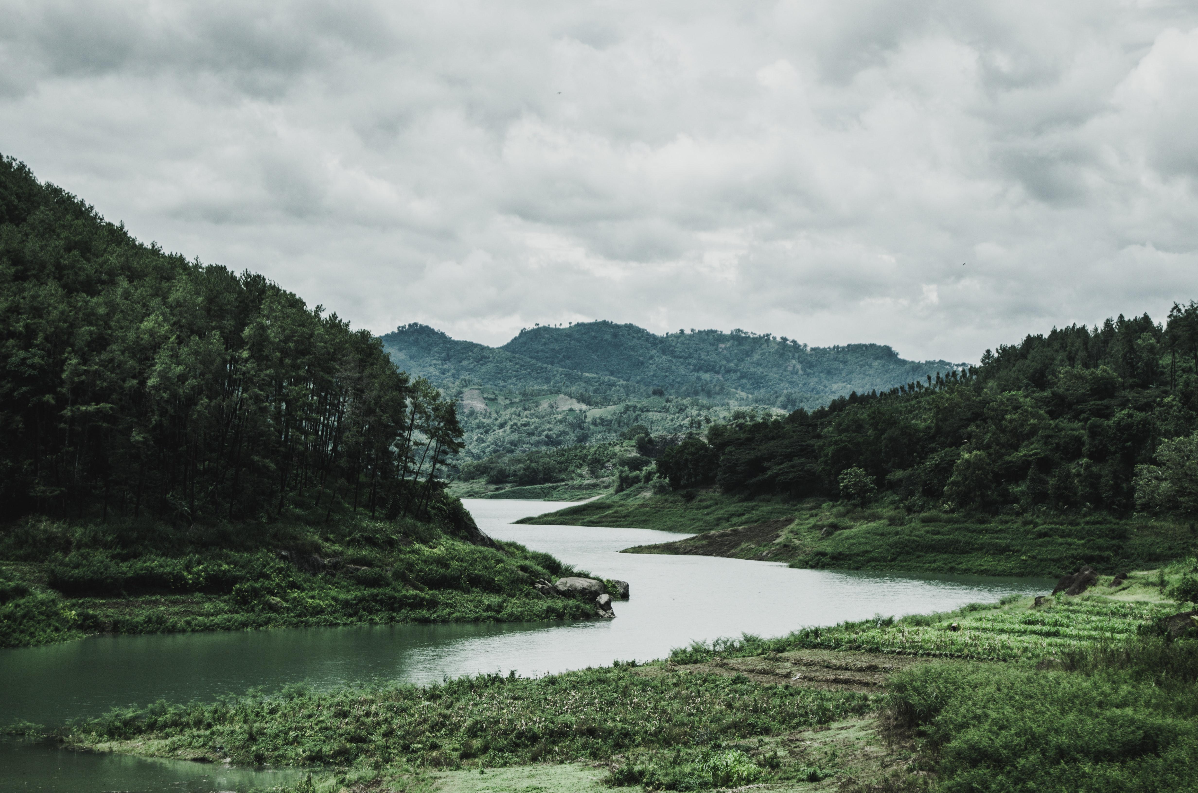 無料画像 雲 曇り空 田舎 昼光 環境 森林 草 Hdの壁紙 丘